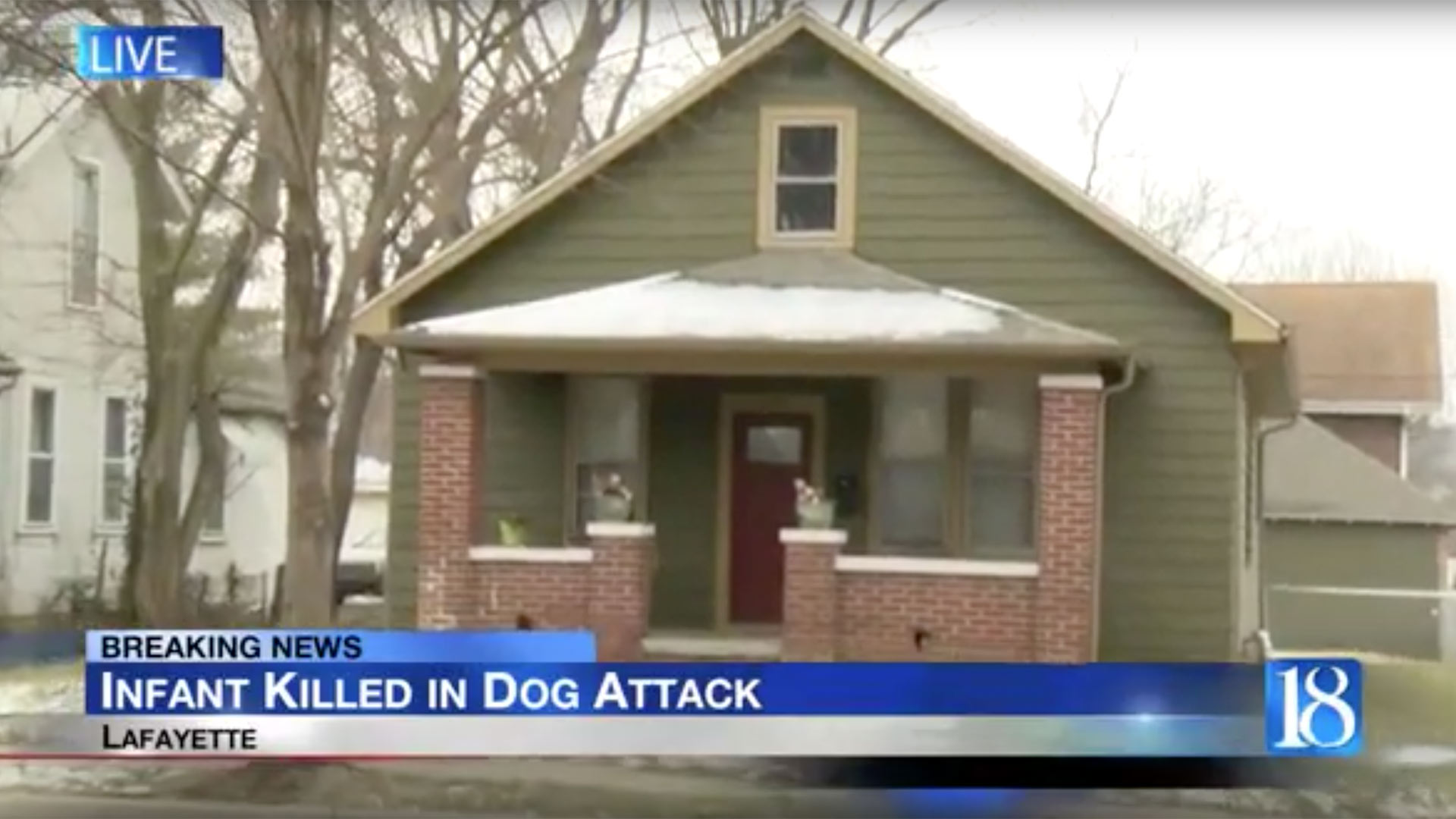 Infant boy killed in dog attack