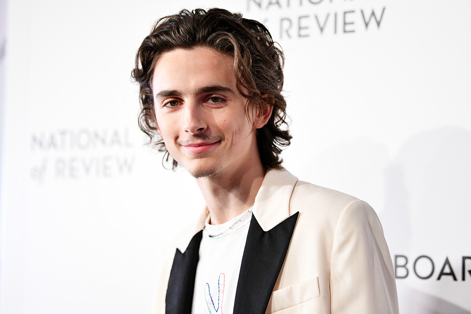 Timothée Chalamet attends the 2020 National Board Of Review Gala on January 08, 2020 in New York City