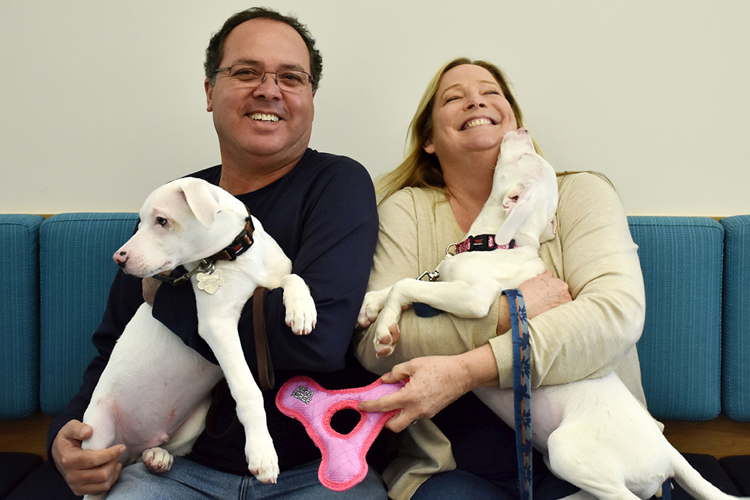blind puppy and guide dog sibling find home