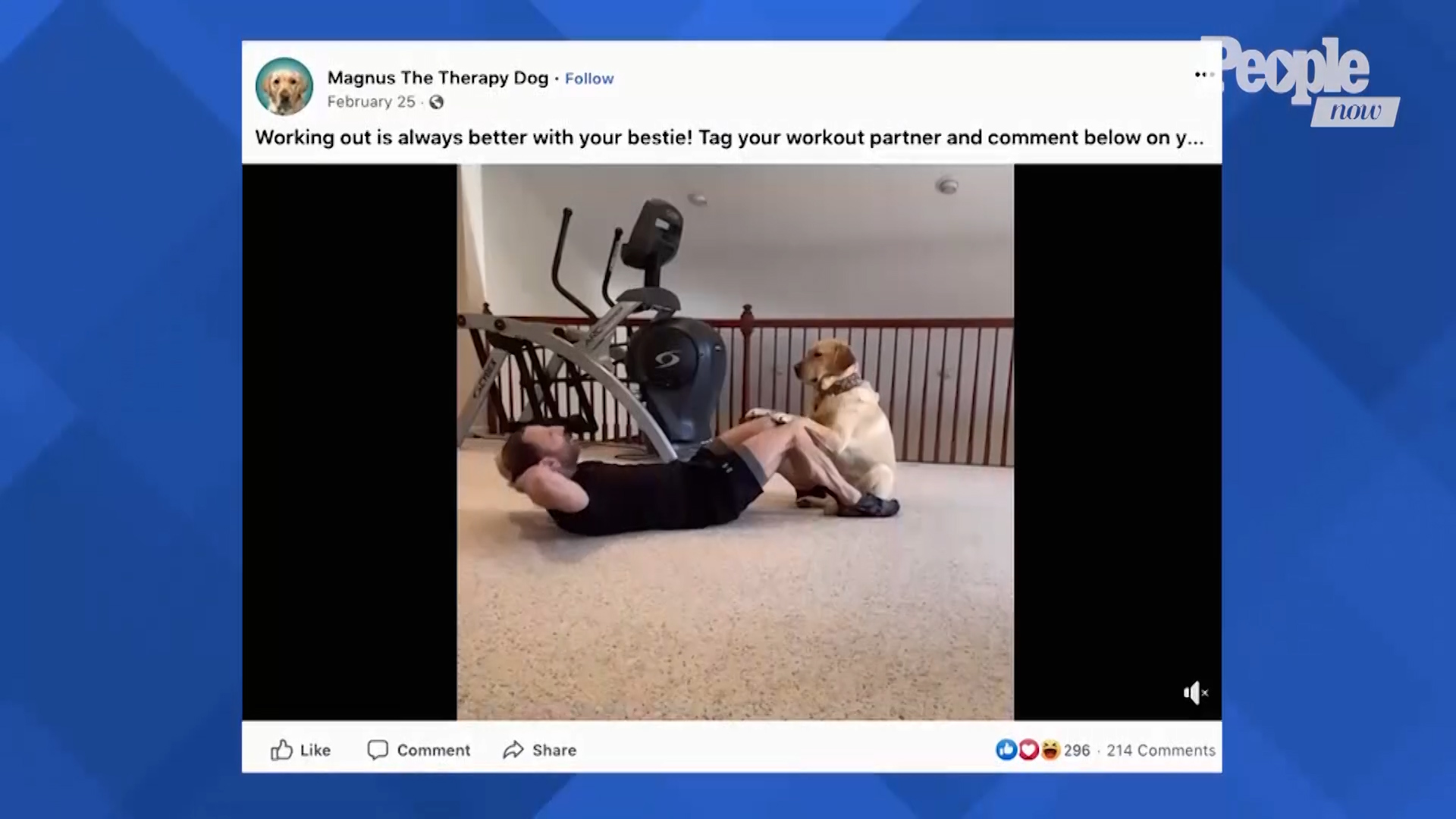 WATCH This Dog Help His Human with His Daily Workout Routines