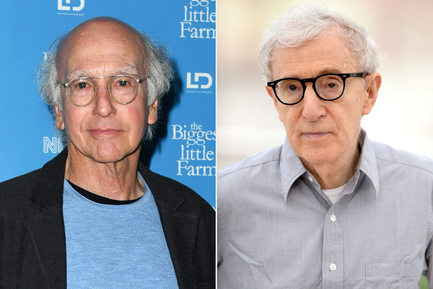Larry David, Woody Allen
