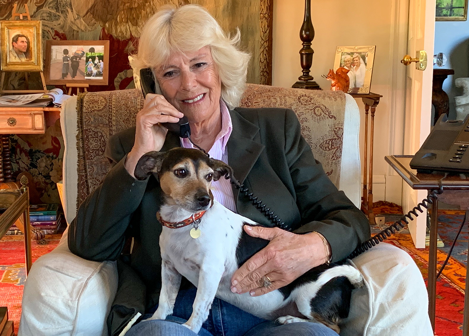 Camilla Duchess of Cornwall Has the Cutest Work from Home Buddy