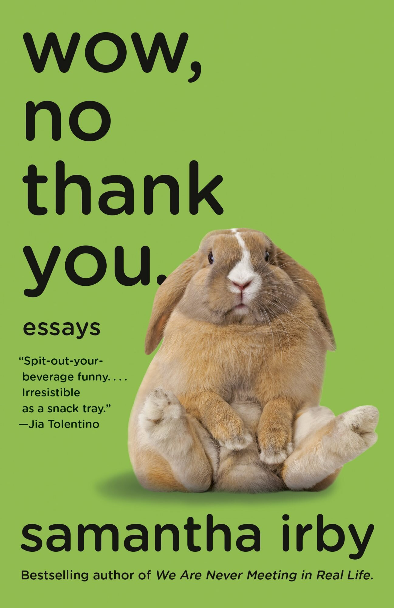 Wow, No Thank You. ESSAYS By SAMANTHA IRBY