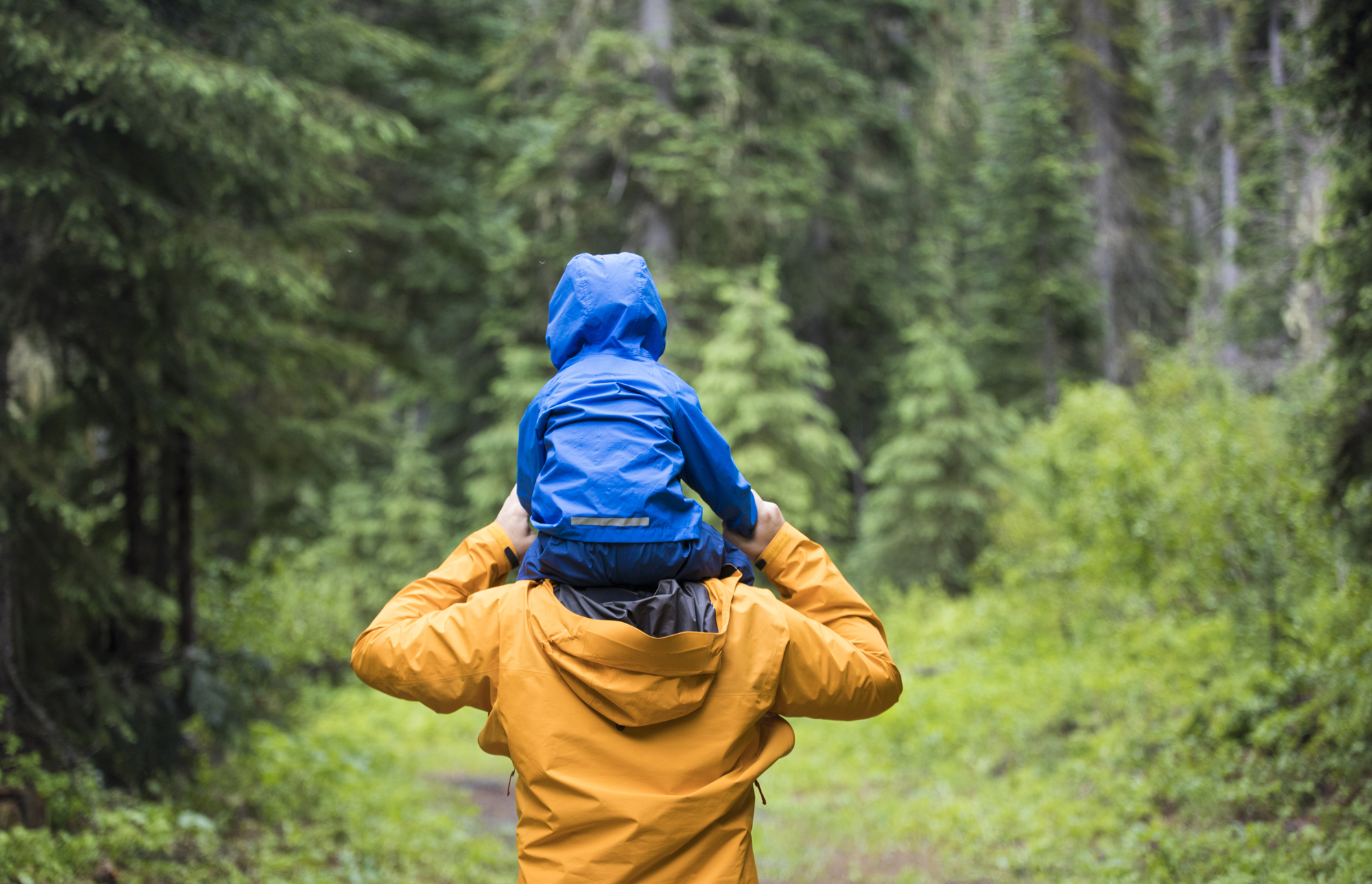 Father carrying son on shoulders during a hike