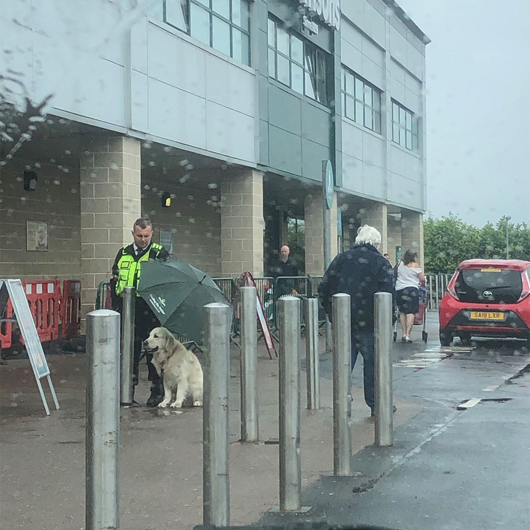 Scottish Security Guard Goes Viral For Shielding a Dog From The Rain With His Umbrella