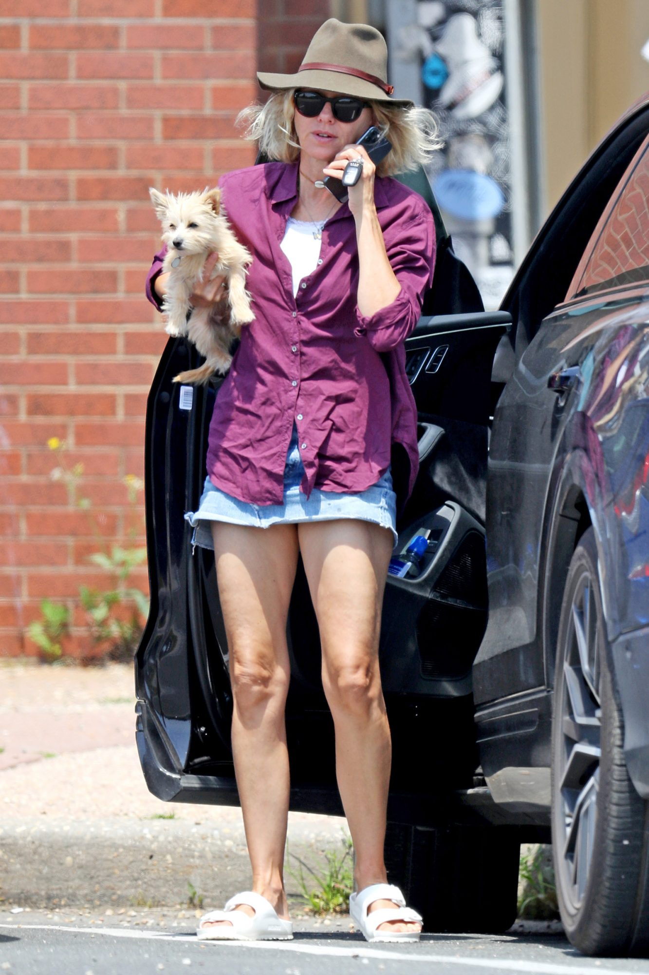 Naomi Watts is Pictured Out and About in The Hamptons With Her Dog.