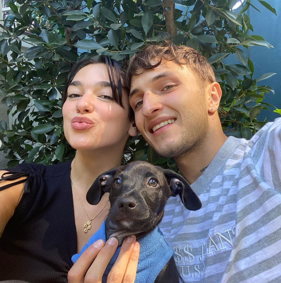 Dua Lipa's new dog