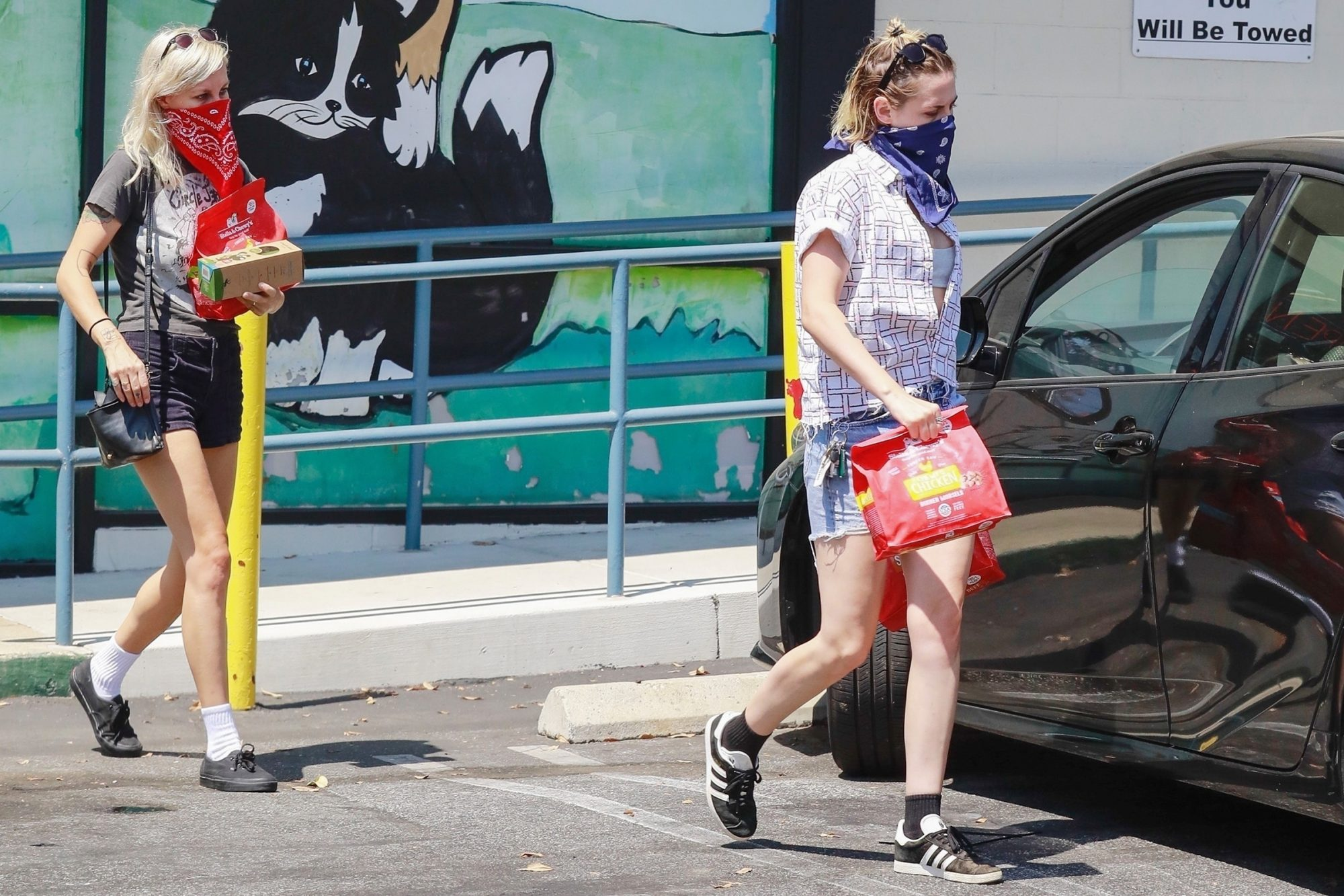 Kristen Stewart and Dylan Meyer pick up pet supplies at For Pets Only