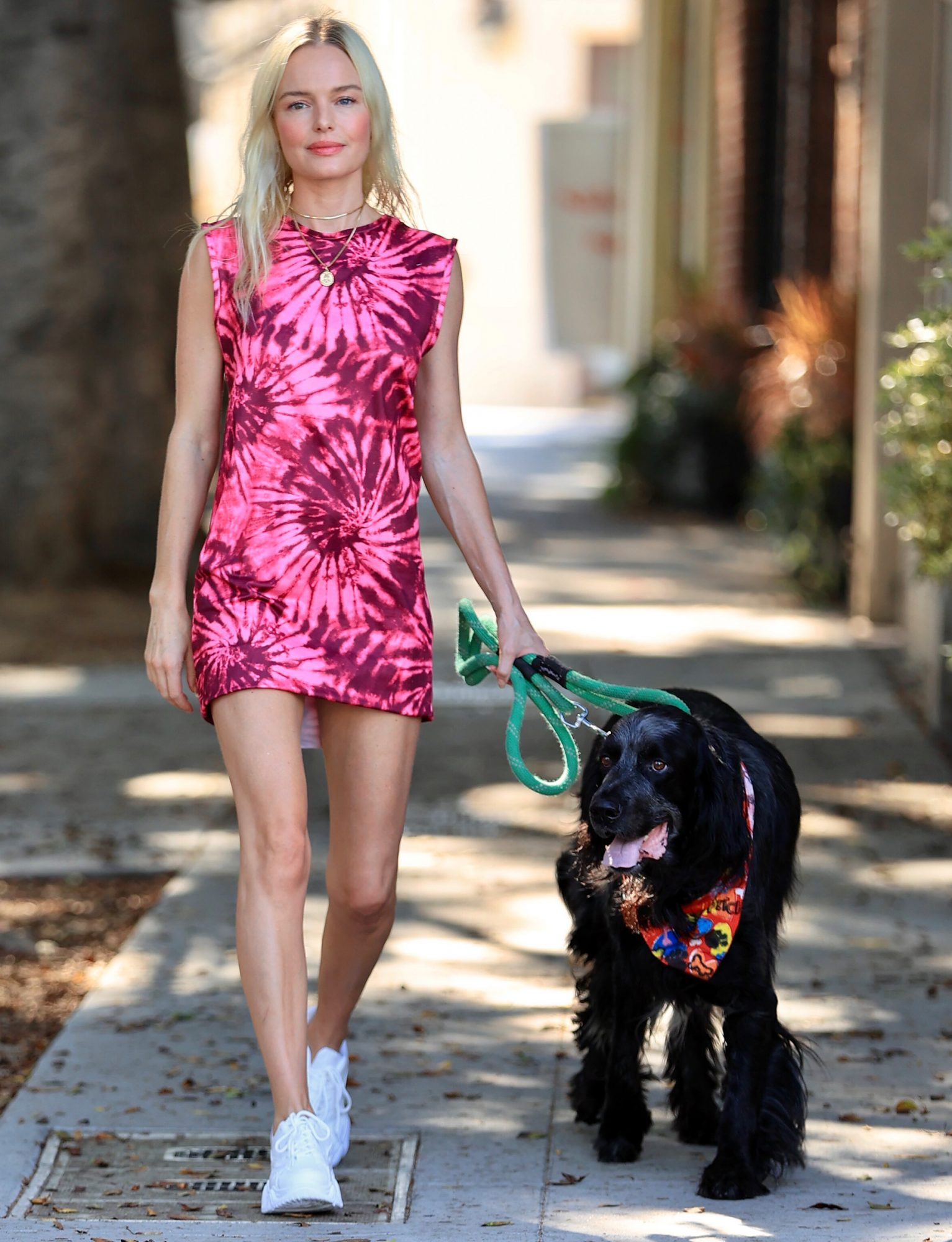 Kate Bosworth stuns in a Tie Dye dress walking her adorable dog