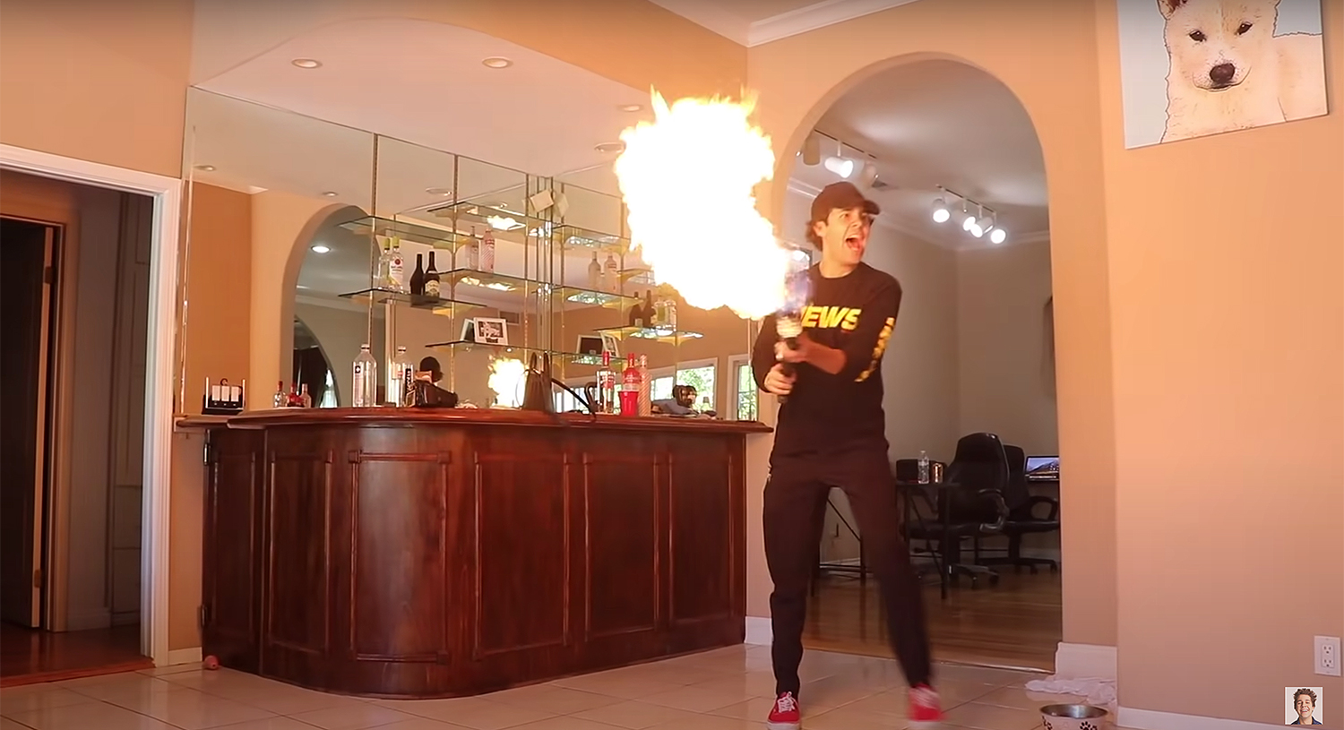 DAVID DOBRIK'S FLAMETHROWER