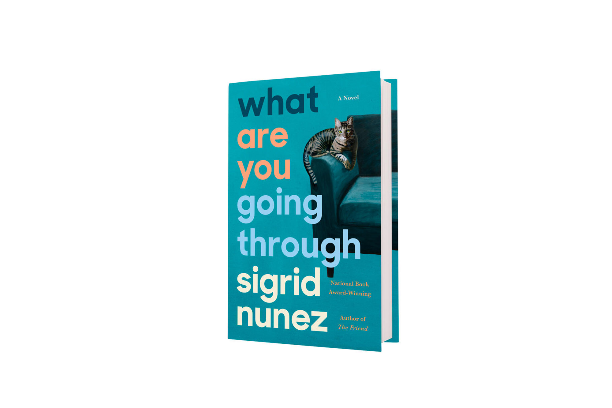 What Are You Going Through by Sigrid Nunez