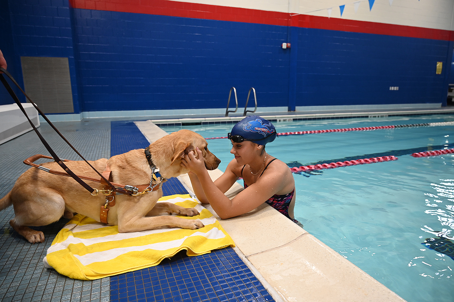 guide dog paired with blind Paralympian