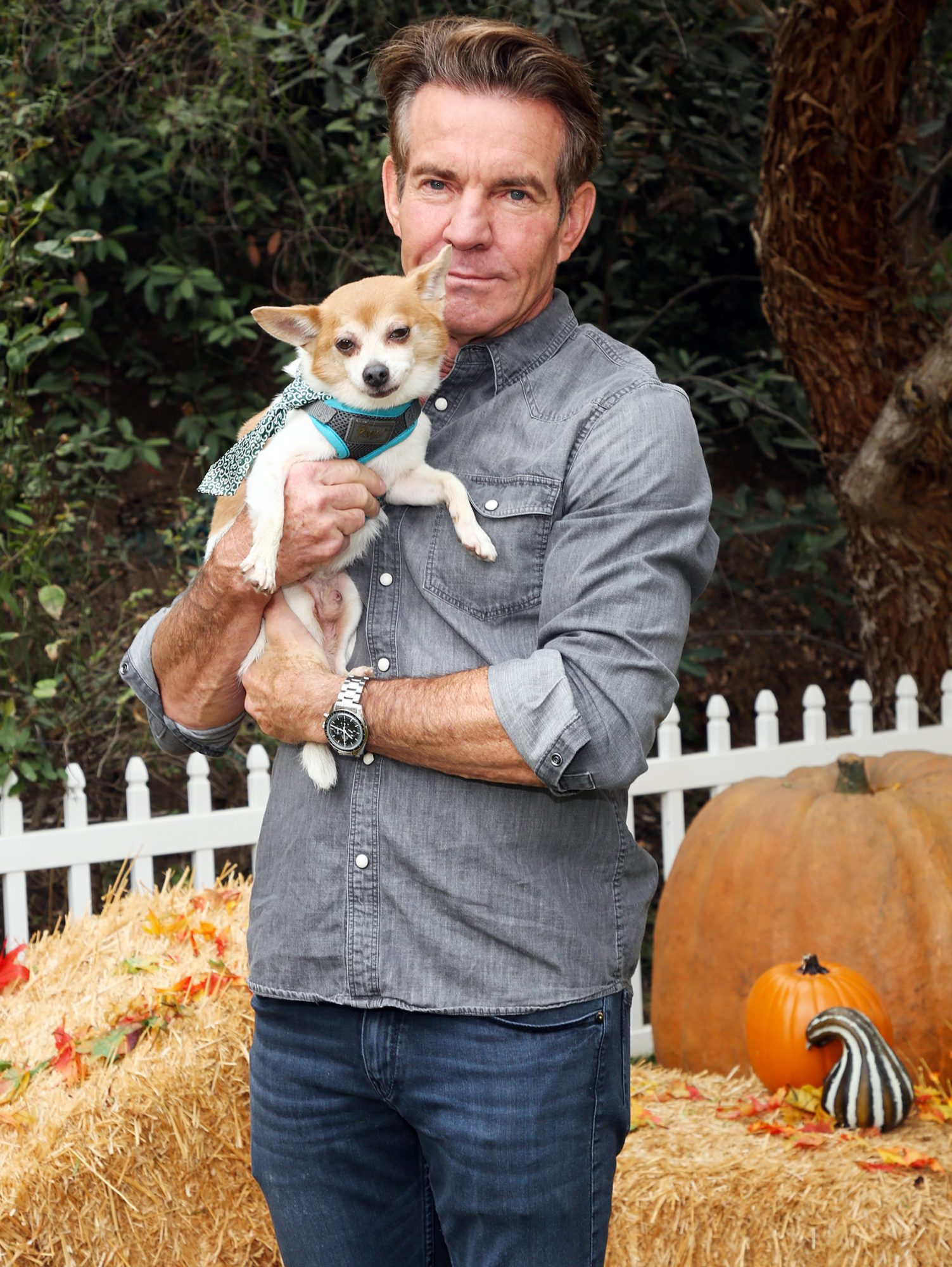 """Dennis Quaid poses with a rescue dog on the set of Hallmark Channel's """"Home & Family"""" at Universal Studios Hollywood on September 09, 2020 in Universal City"""
