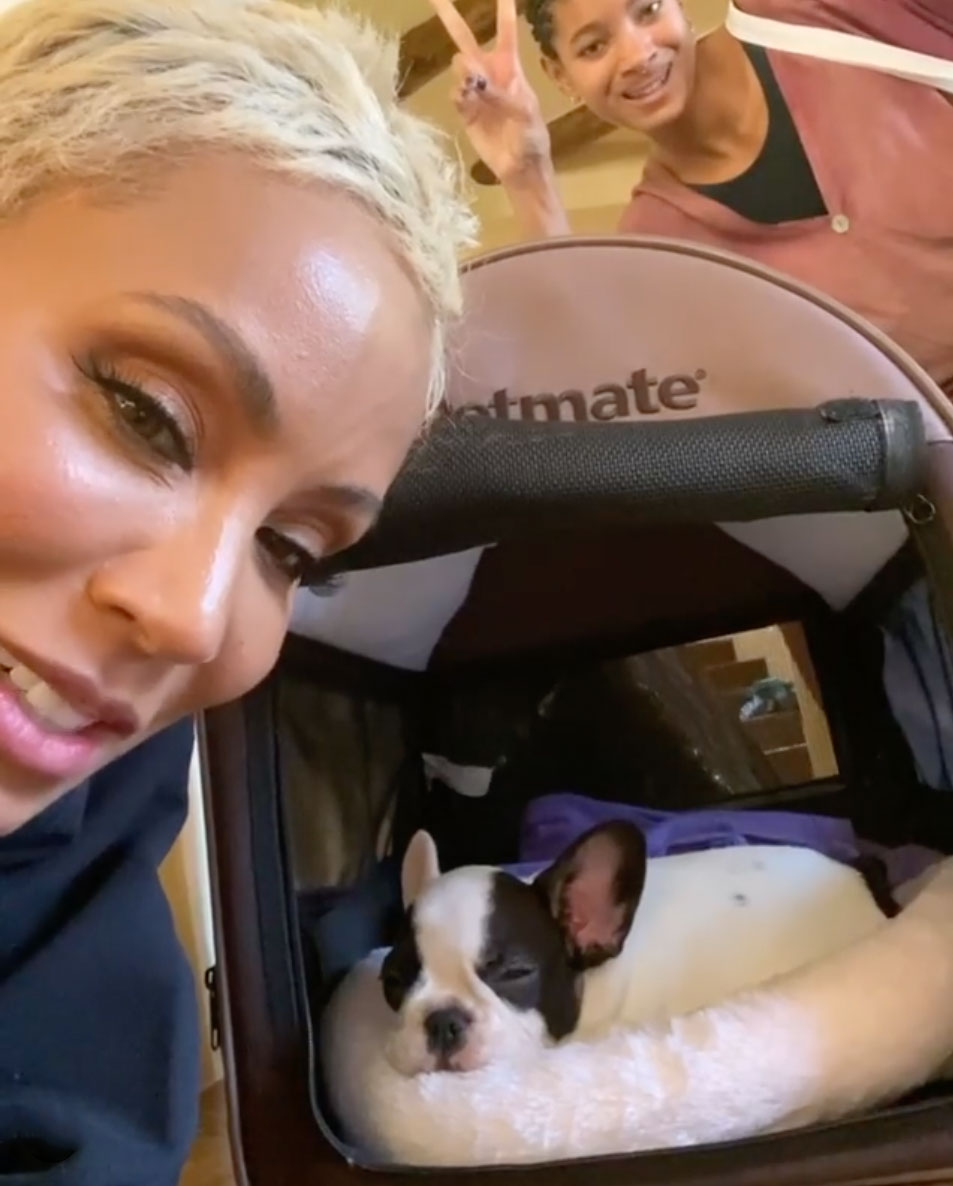 Jada Smith with new dog