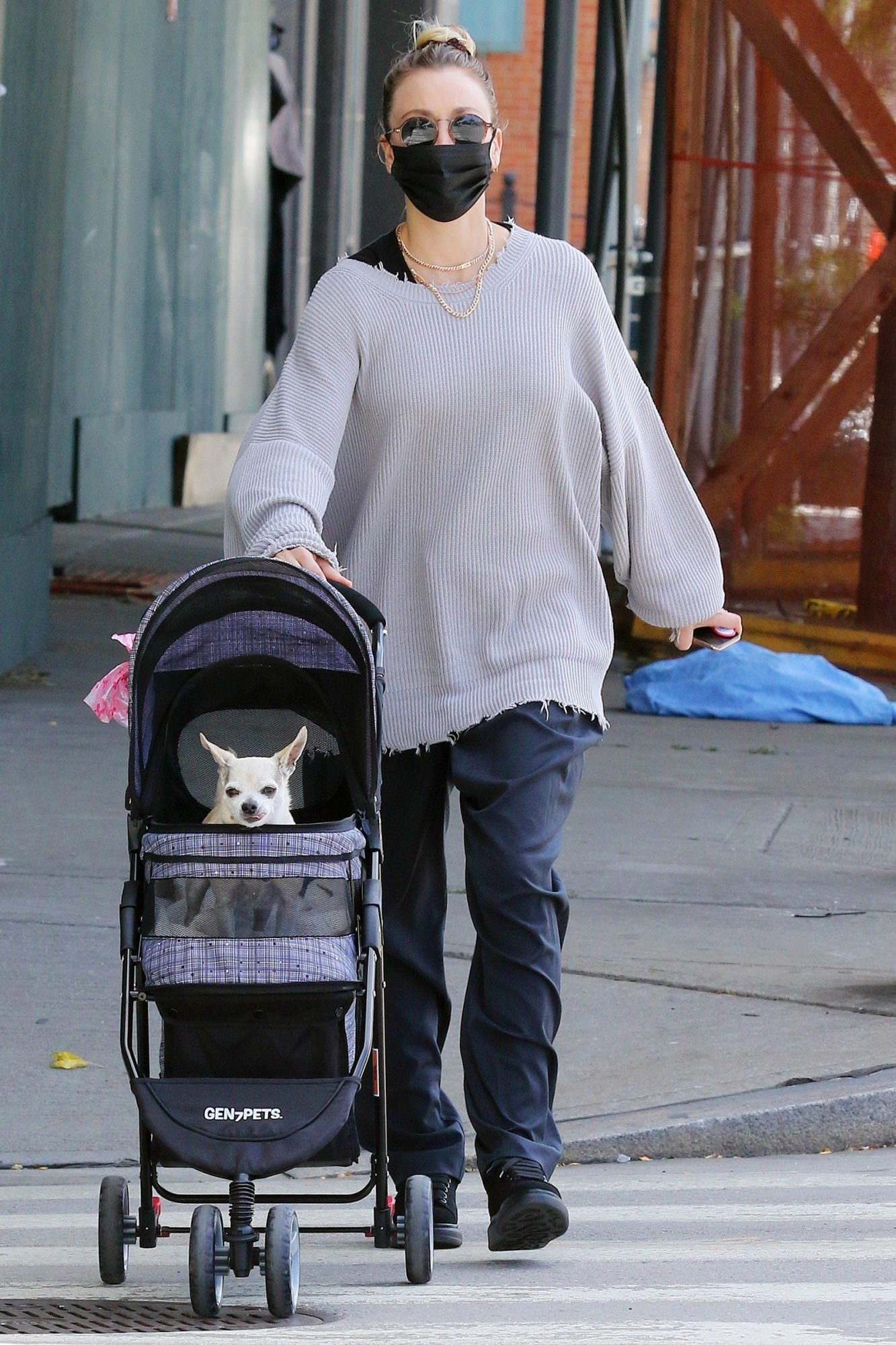 Kaley Cuoco Pushes Her Dog Dumpy in a Stroller