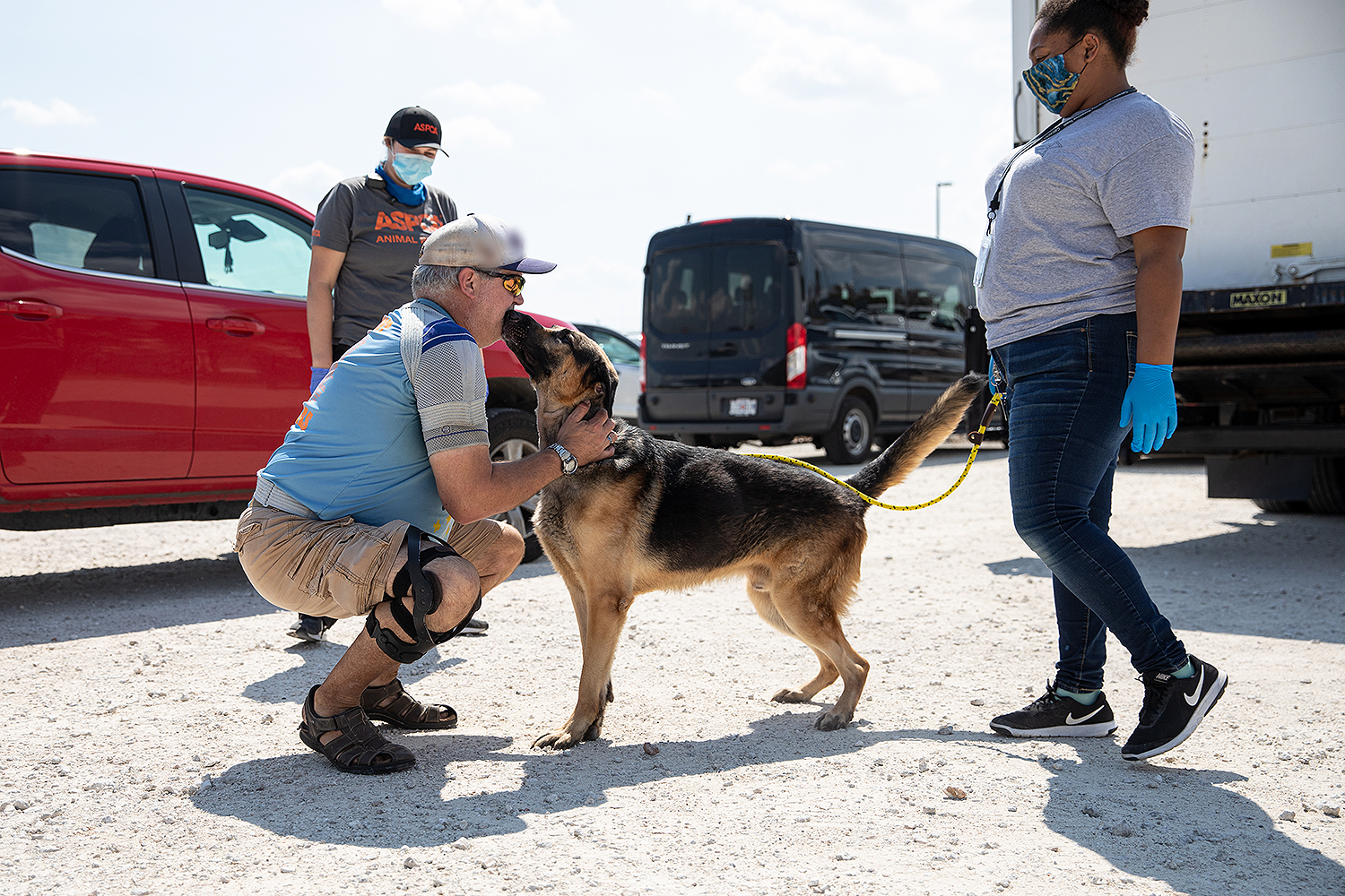 dog reunited with veteran owner
