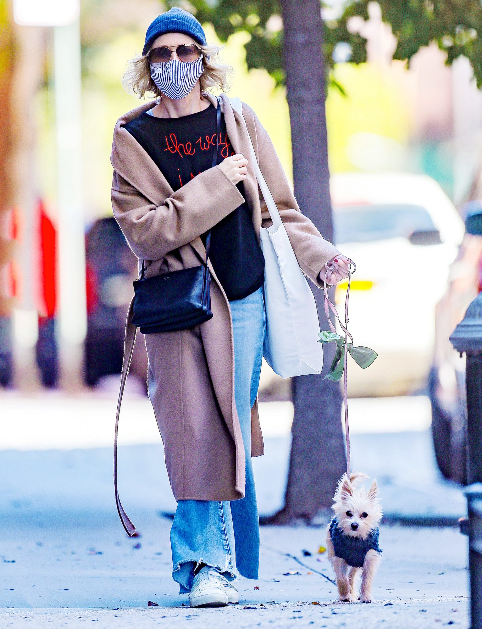 Naomi Watts Takes Her Puppy For A Walk
