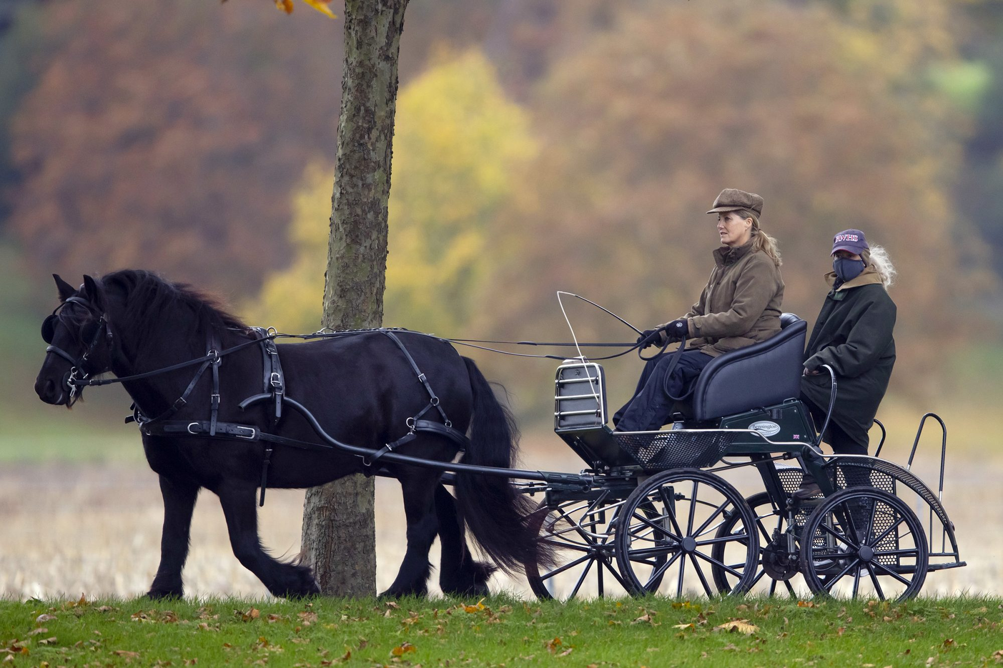 Sophie Countess Of Wessex driving her carriage with her Groom, Windsor Castle, UK - 24 Oct 2020