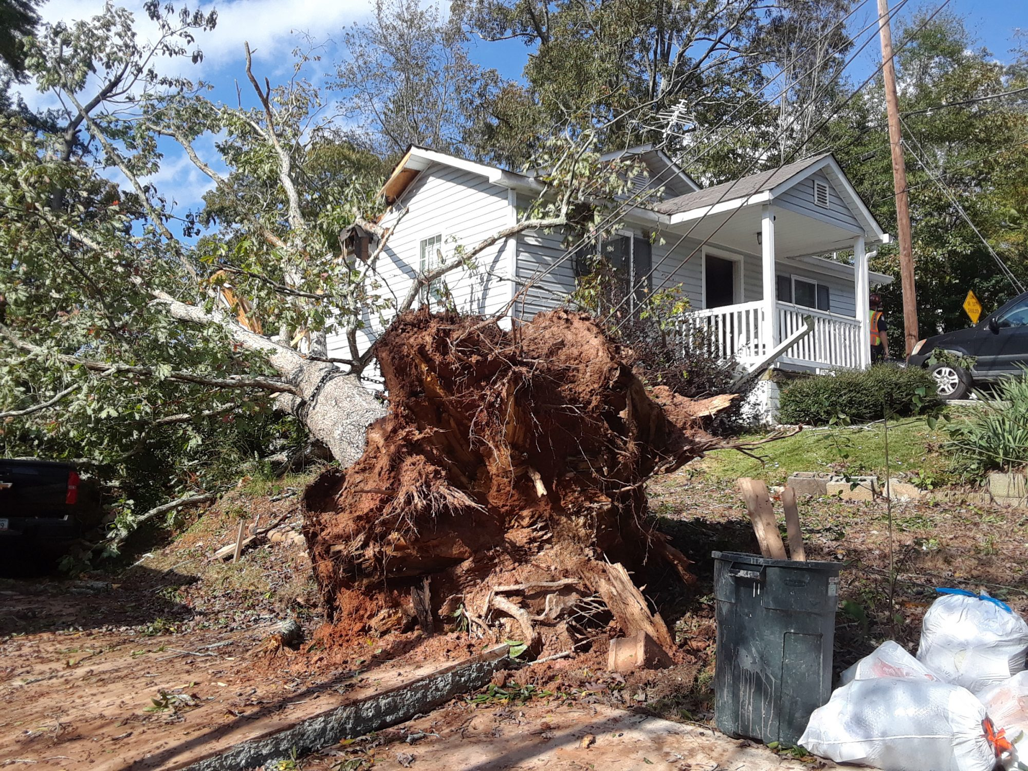 Couple in Their 20s Killed After Tree Falls on House in Georgia