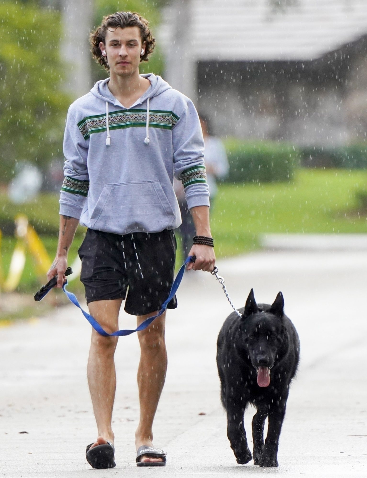 Shawn Mendes braves the rain to take his dog for a walk