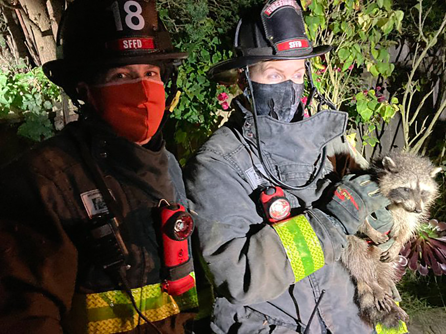 Raccoon Rescued by Fire Dept