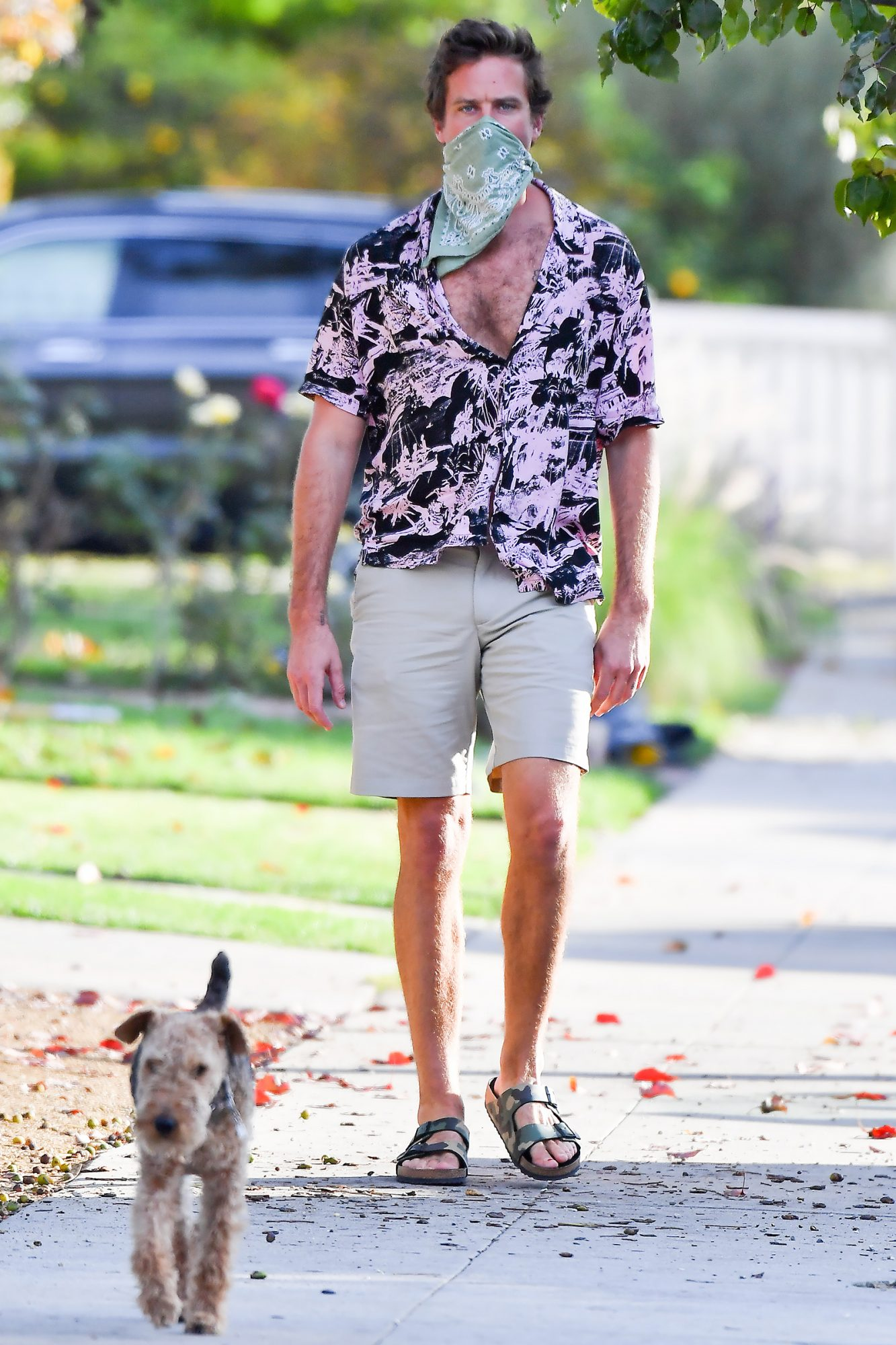 Armie Hammer Goes On A Search For His Dog In LA