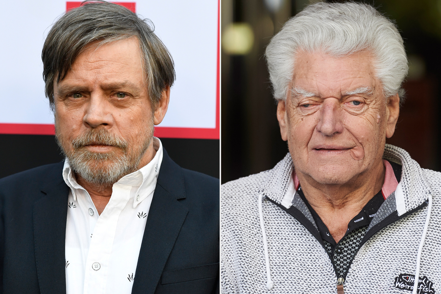 Mark Hamill and Billy Dee Williams Lead Tributes to Dave Prowse