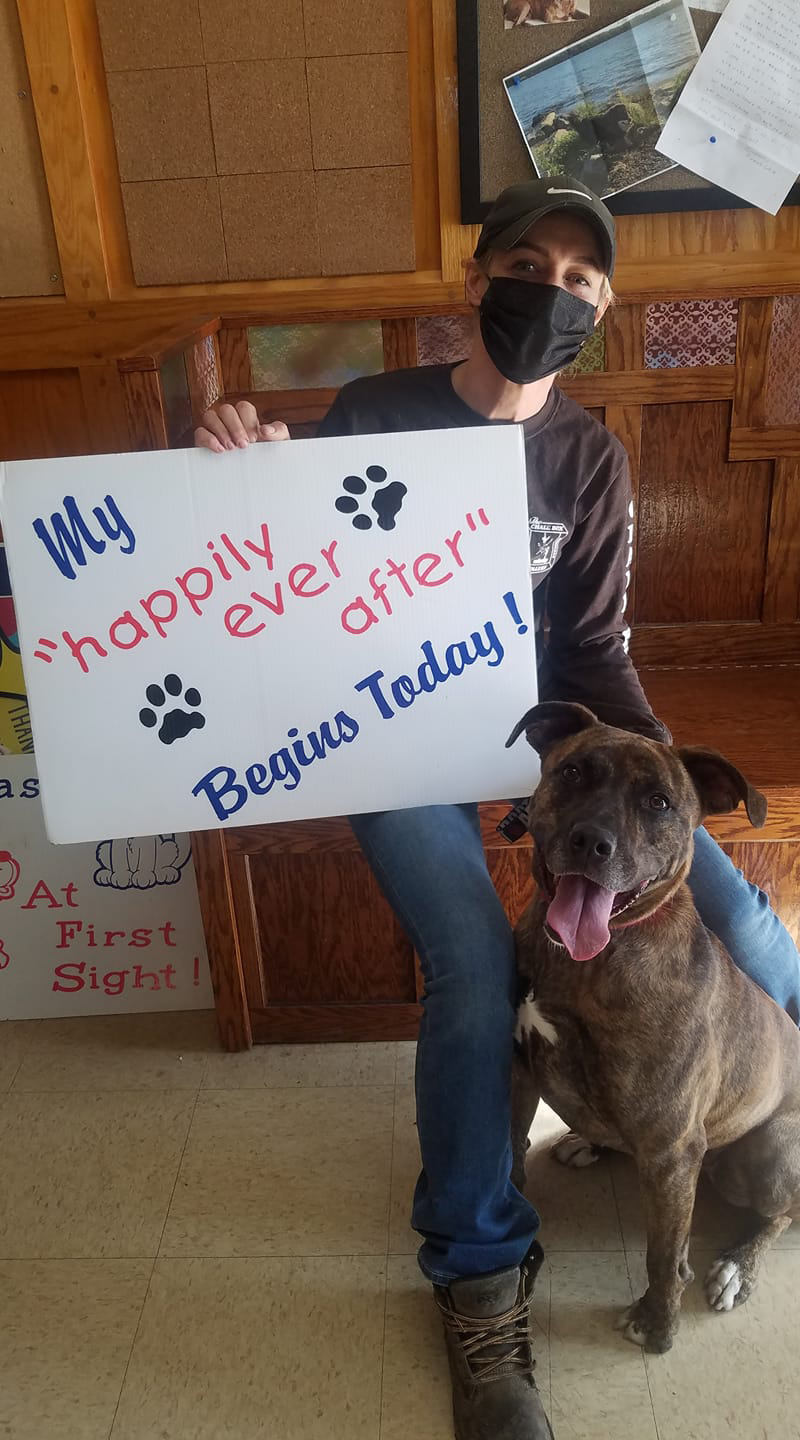 Mia adopted after 842 days in a shelter
