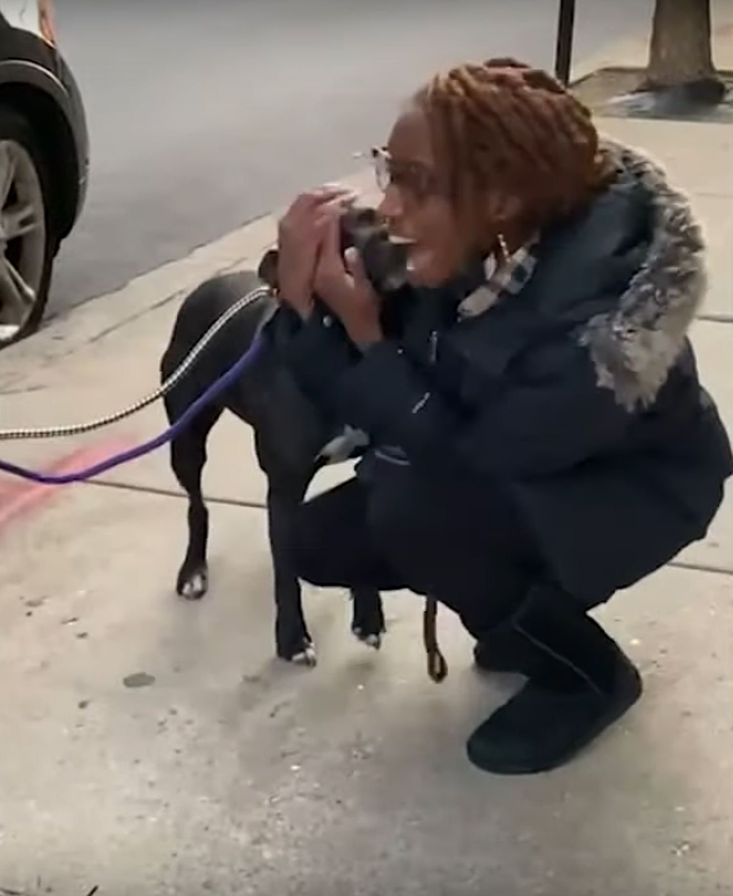 Lost Pit Bull Reunites with Illinois Family Nearly 1 Year After Going Missing: 'A Holiday Miracle'