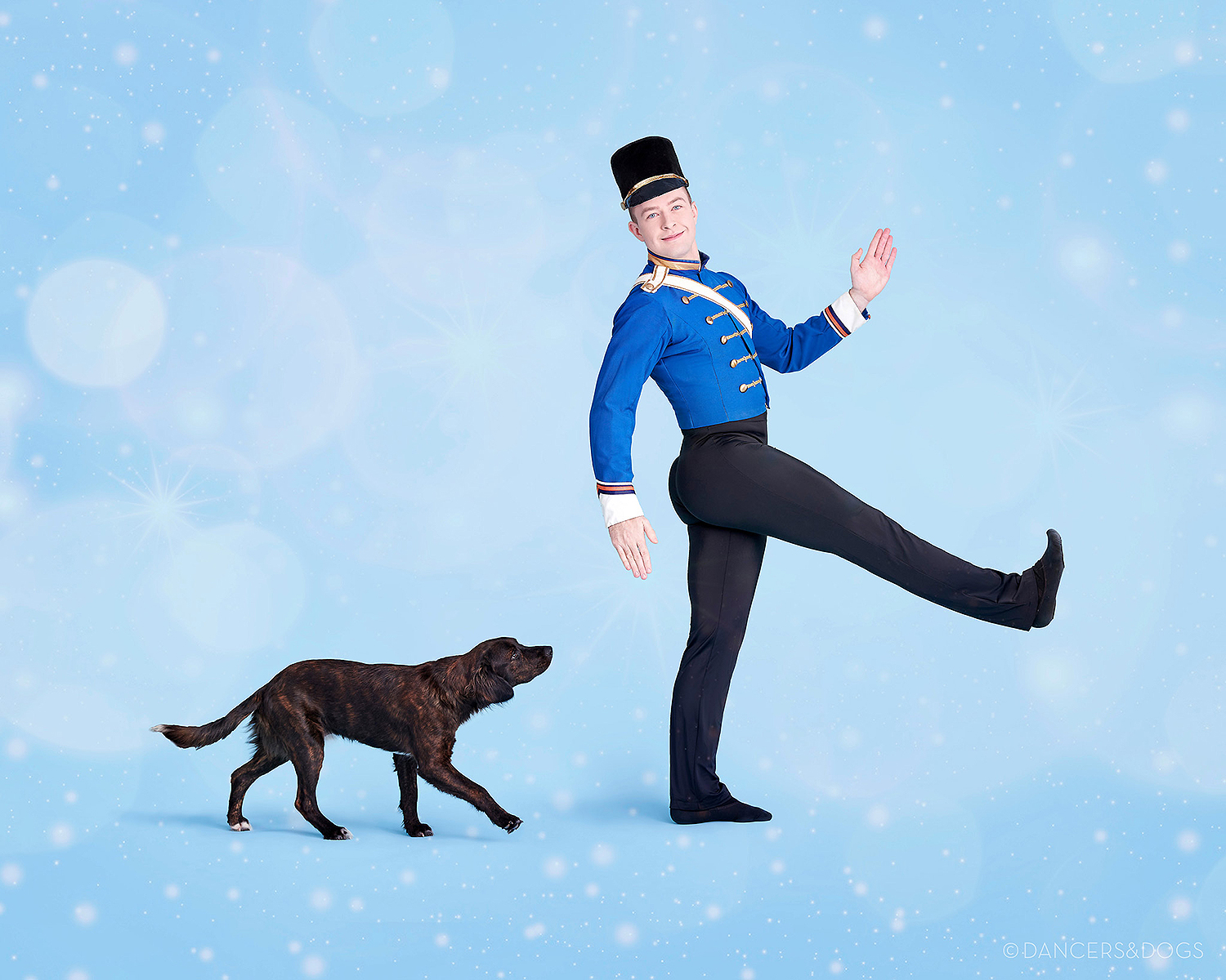 Dancers and Dogs
