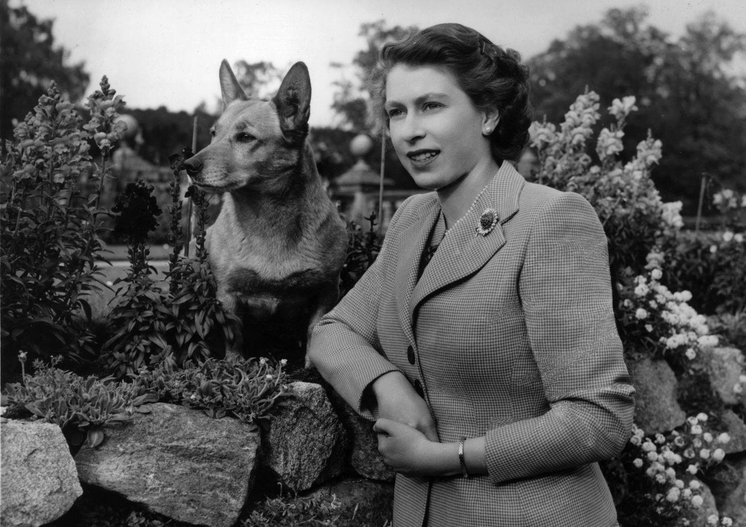 Queen Elizabeth II at Balmoral Castle with one of her Corgis