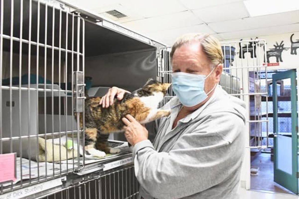 Patches the cat turns up after being missing for 3 years