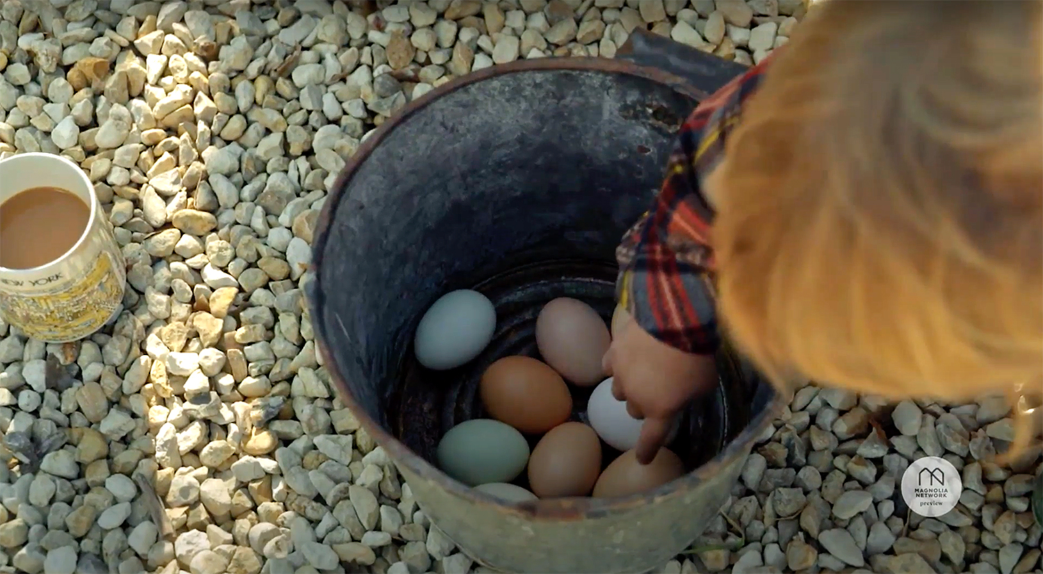 Chip and Joanna Harvest Eggs with Son Crew