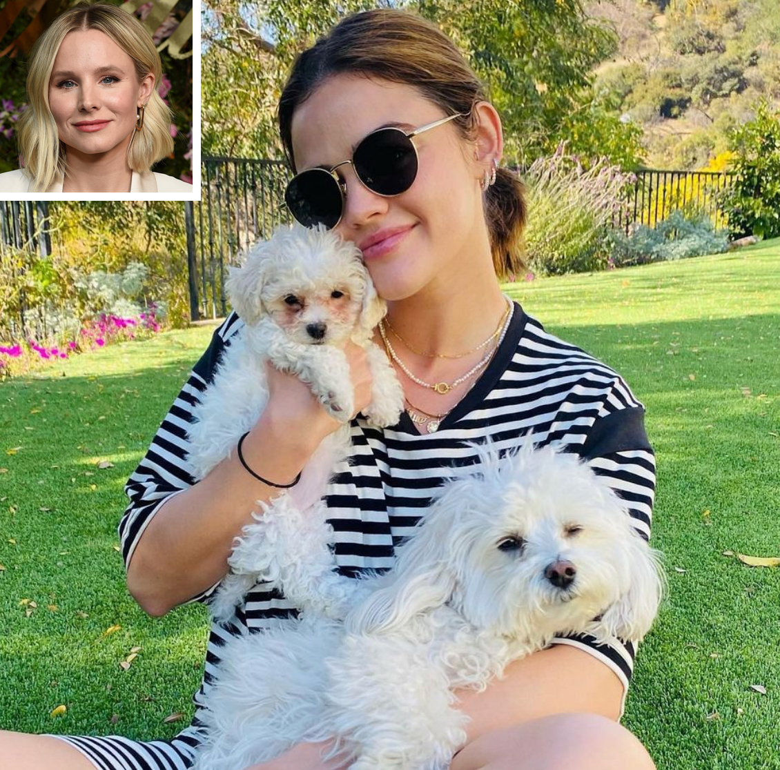 Lucy Hale adopts new dog 2/6/21