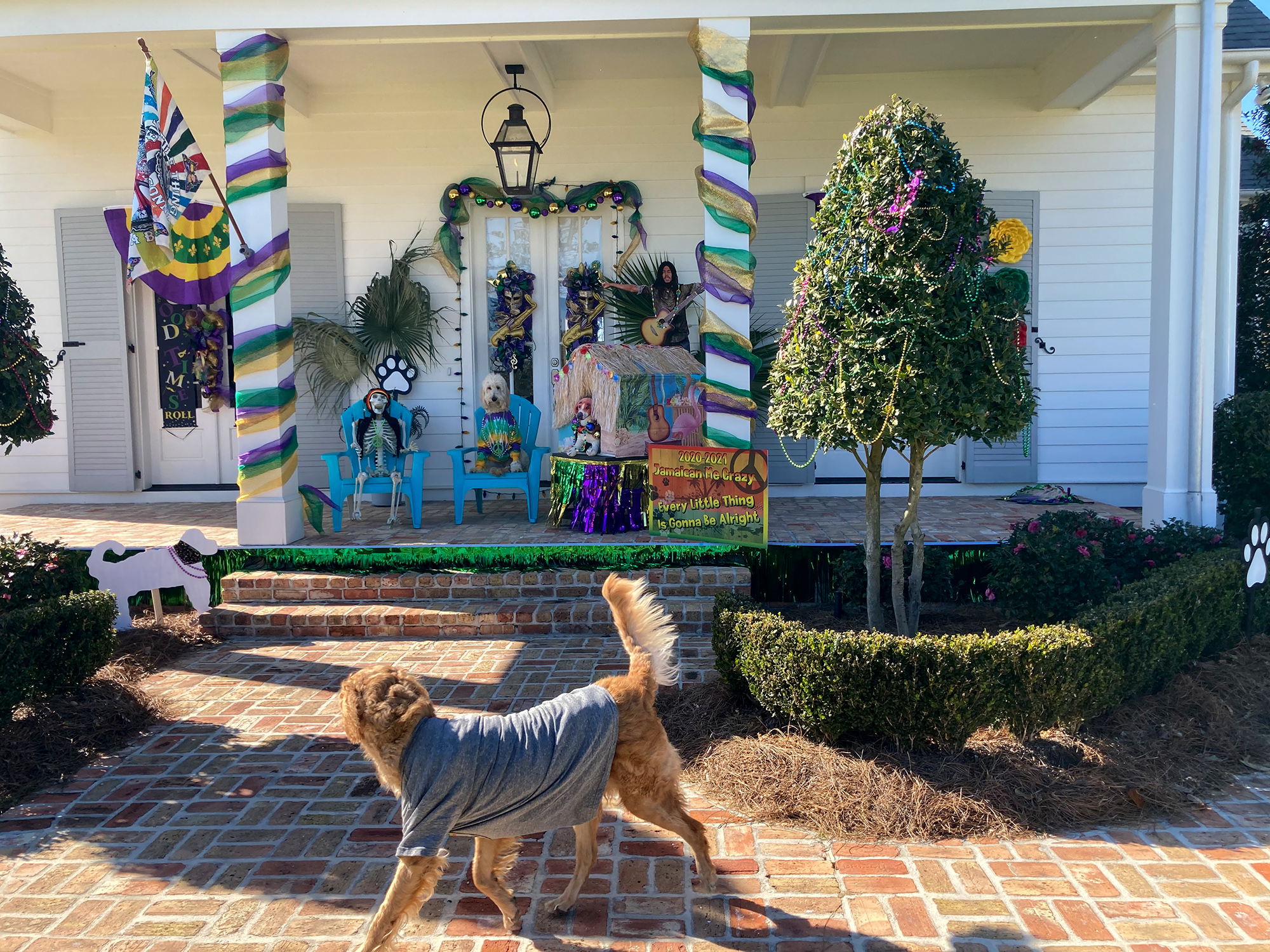 Jamaican Me Crazy Dog House Float