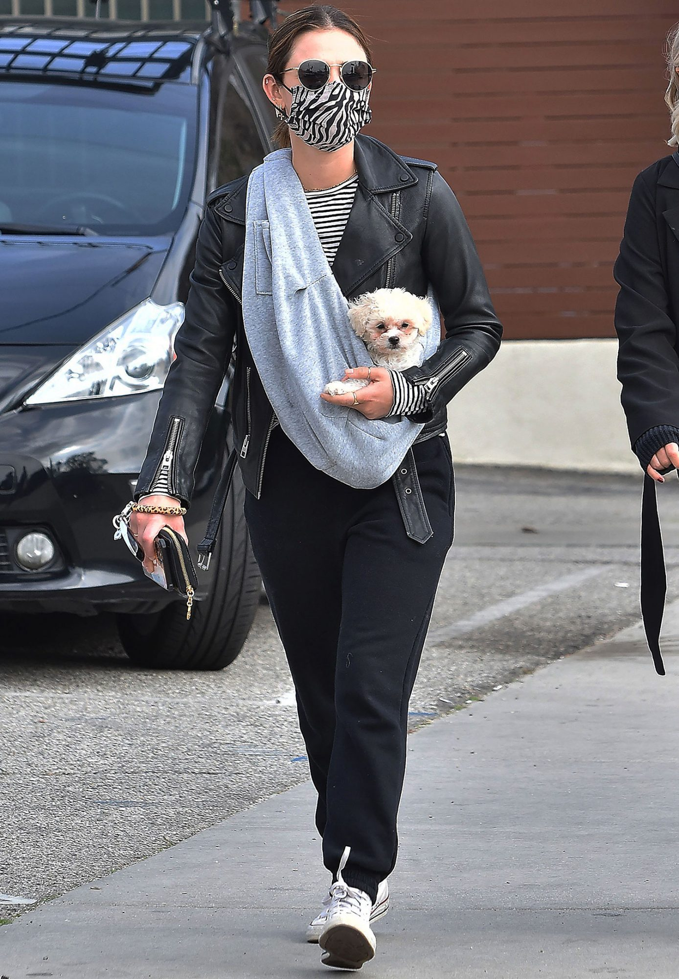Lucy Hale is seen out with her new puppy