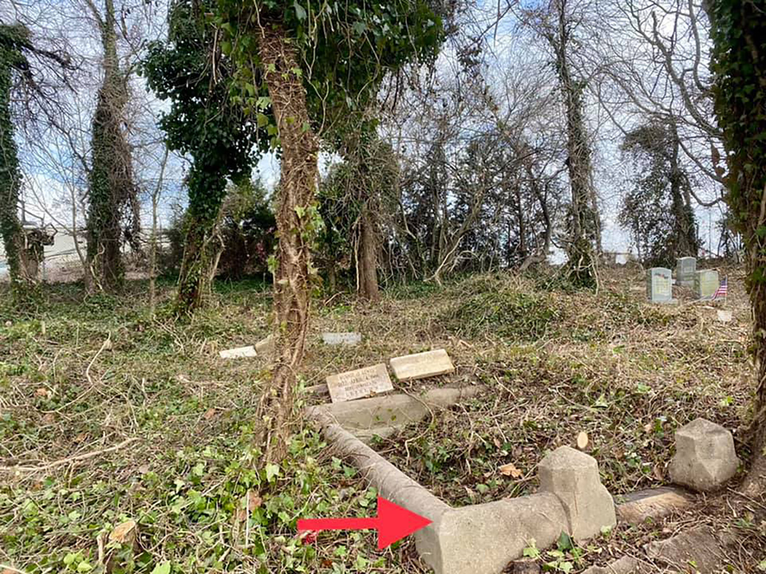 Woodland cemetery cleanup