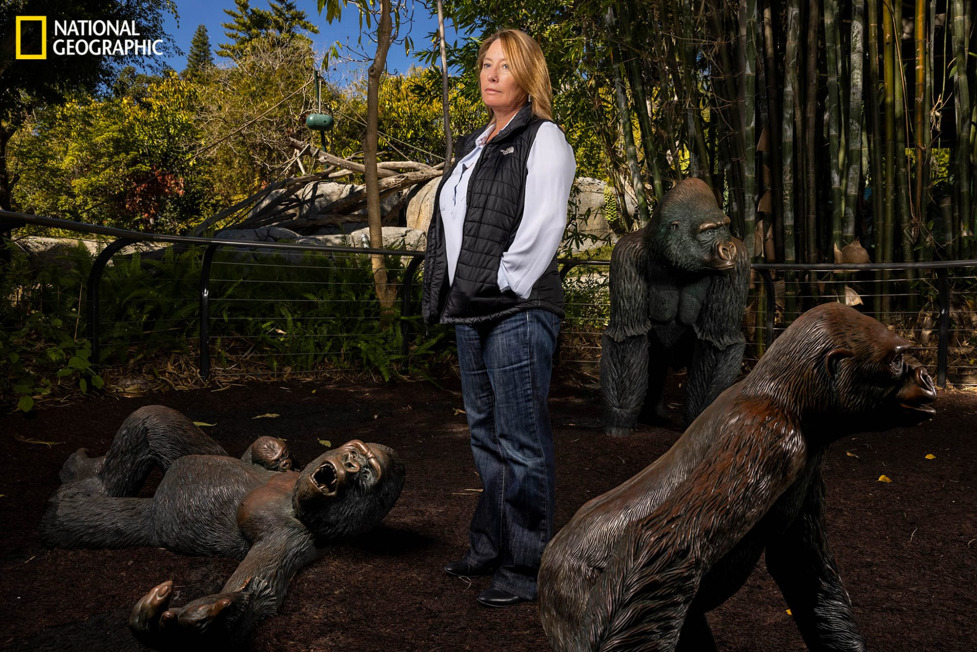 "Nadine Lamberski, head of wildlife health at the San Diego Zoo Wildlife Alliance, stands outside the gorilla habitat. After a whirlwind month caring for the world's first non-human primates to test positive for the coronavirus, she decided to vaccinate the facility's other great apes. ""In my career, I haven't had access to an experimental vaccine this early in the process and haven't had such an overwhelming desire to want to use one,"" she says."