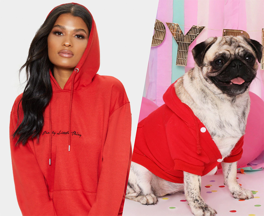 matching dog and owner hoodies
