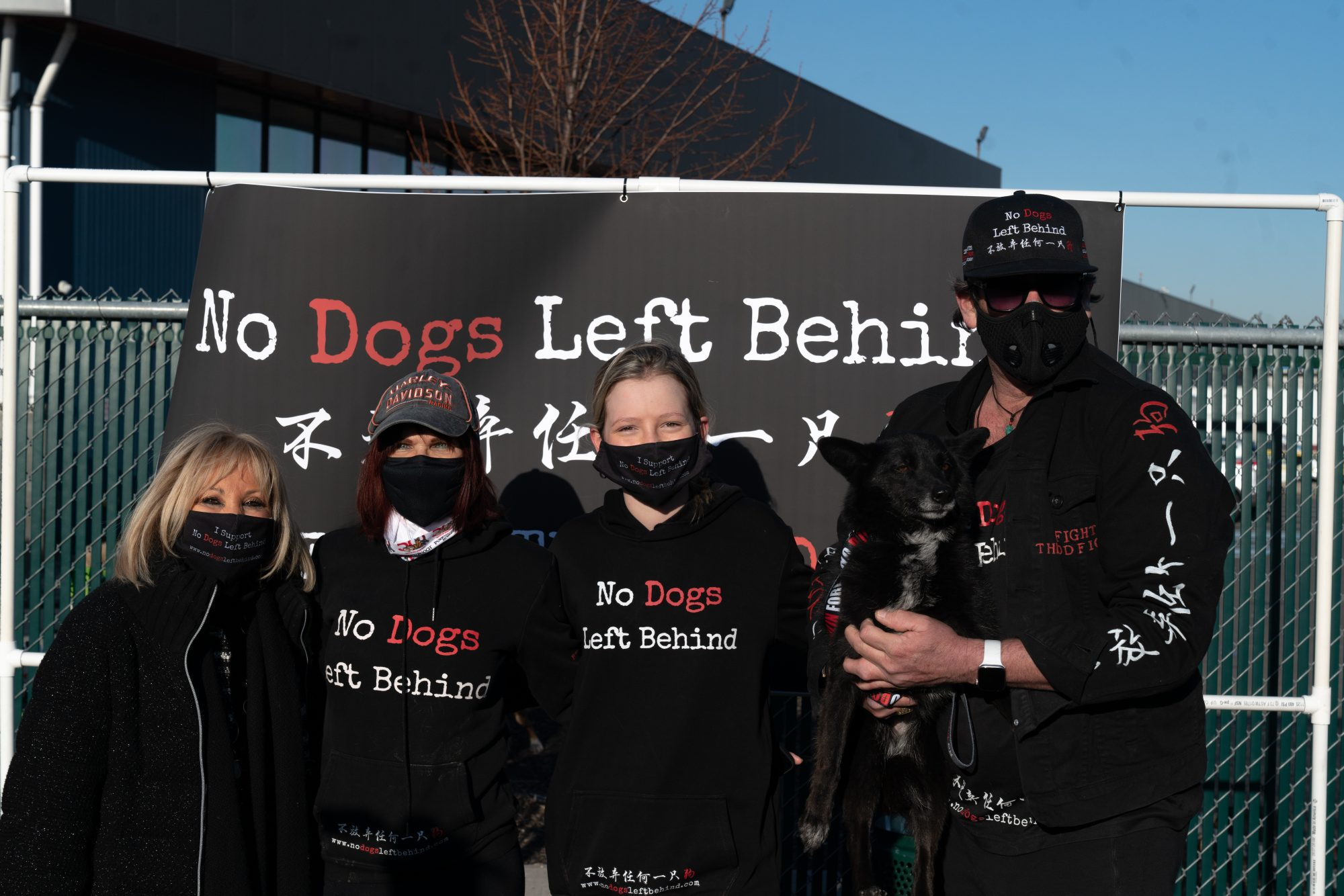 Dog meat rescues find new homes