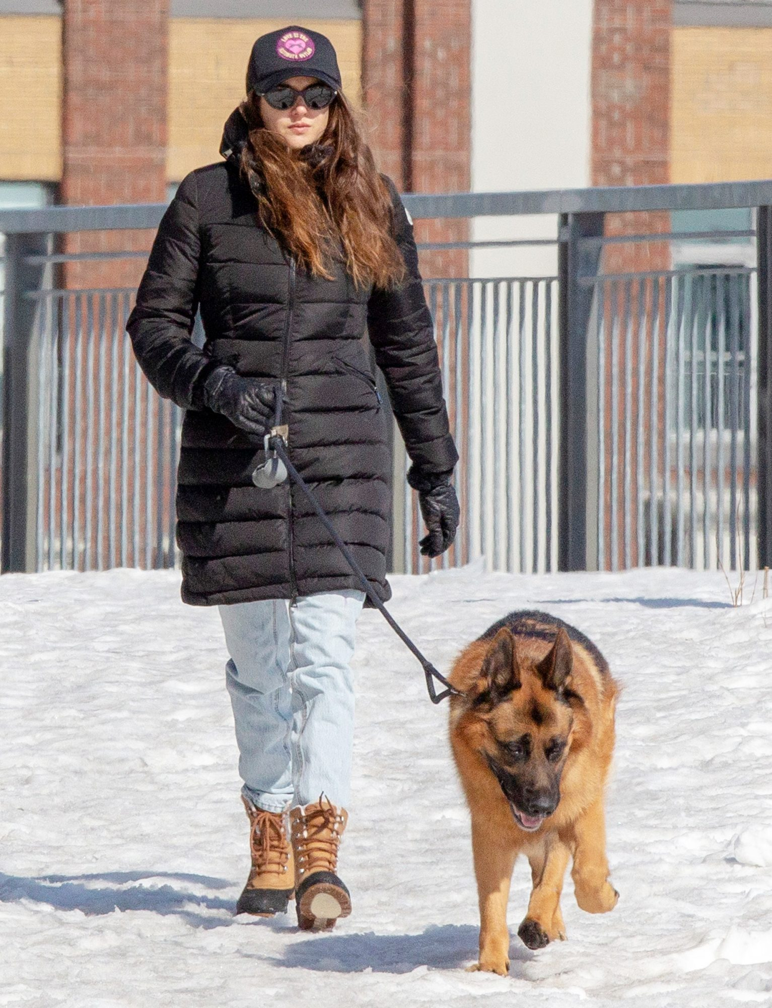 Shailene Woodley is Spotted Walking Her Dog in Montreal