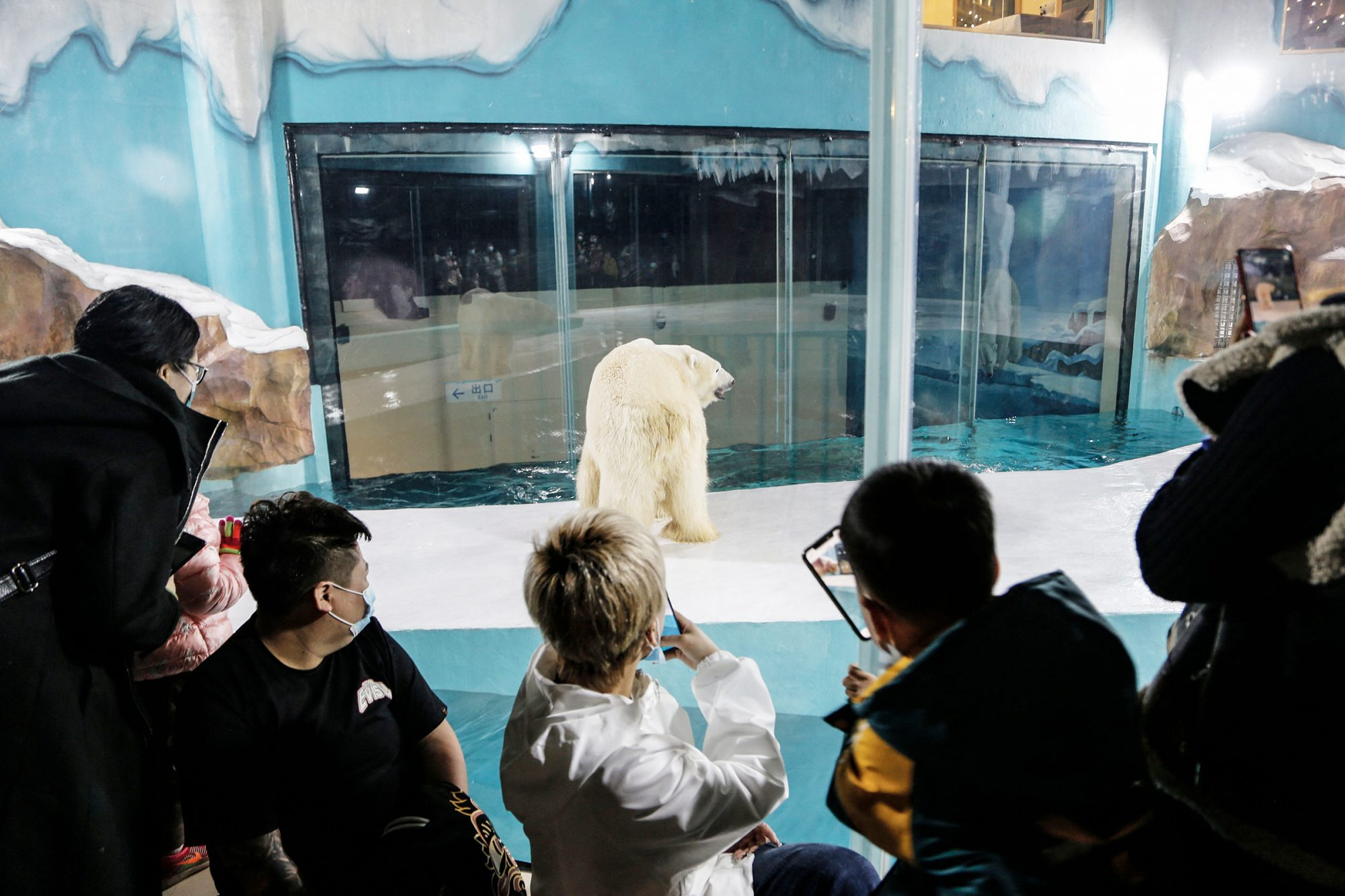 People look at a polar bear inside an enclosure at a newly-opened hotel, which allows guests views of the animals - listed as a vulnerable species by the International Union for Conservation of Nature (IUCN) - from rooms on the premises in Harbin, northeastern China's Heilongjiang province, on March 12, 2021