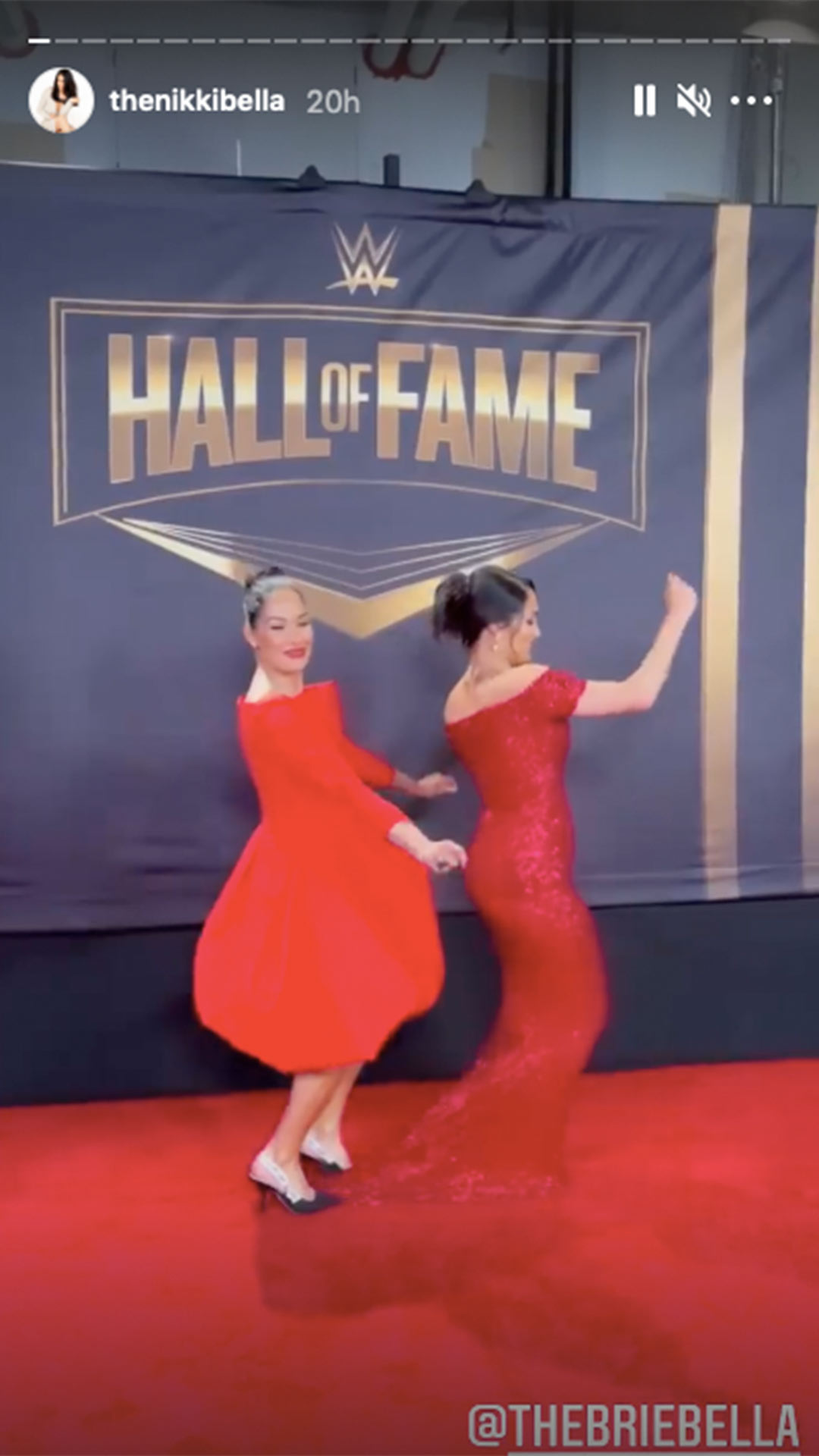 bella Twins www hall of fame