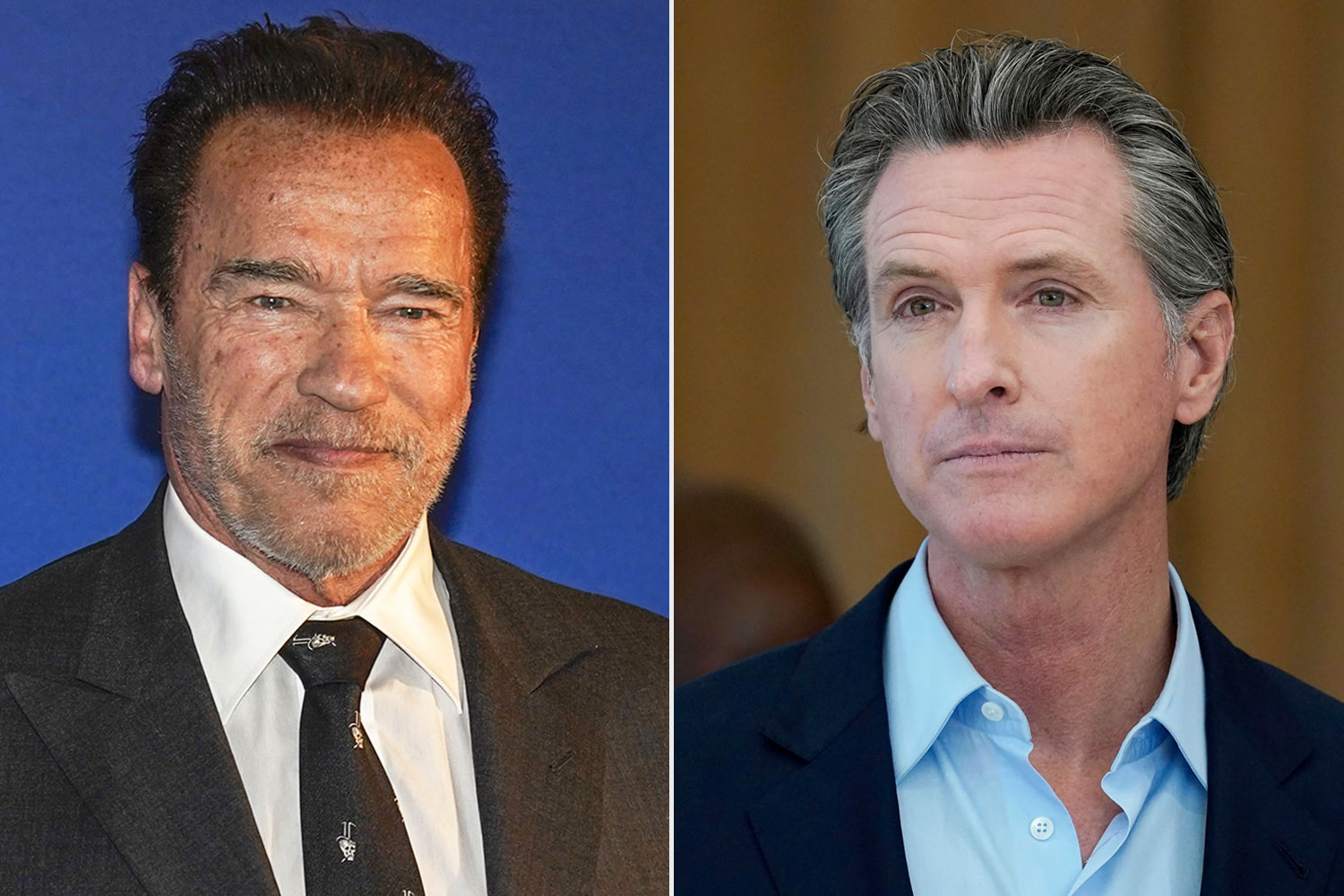 Arnold Schwarzenegger and gavin newsom