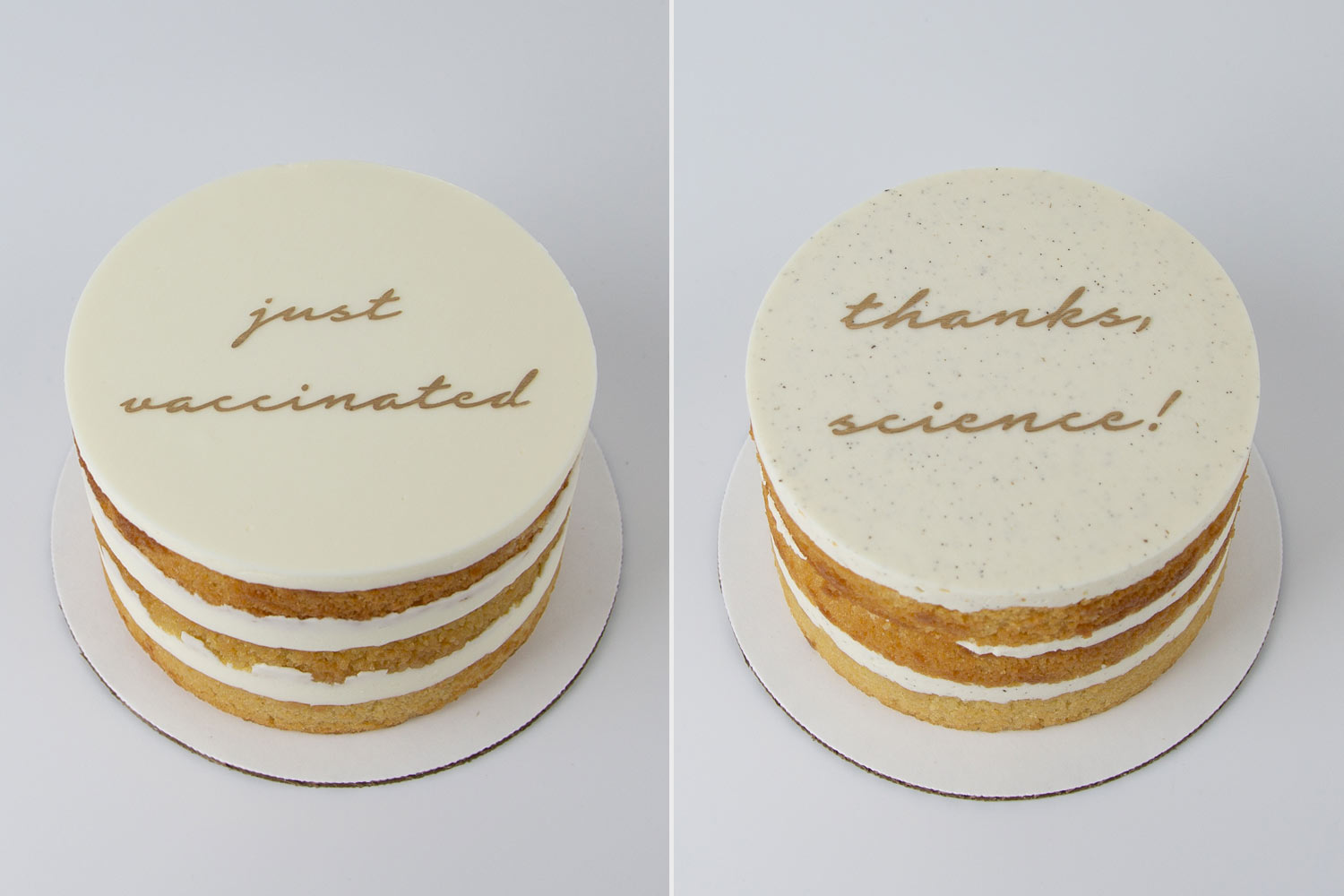 vaccinated cakes