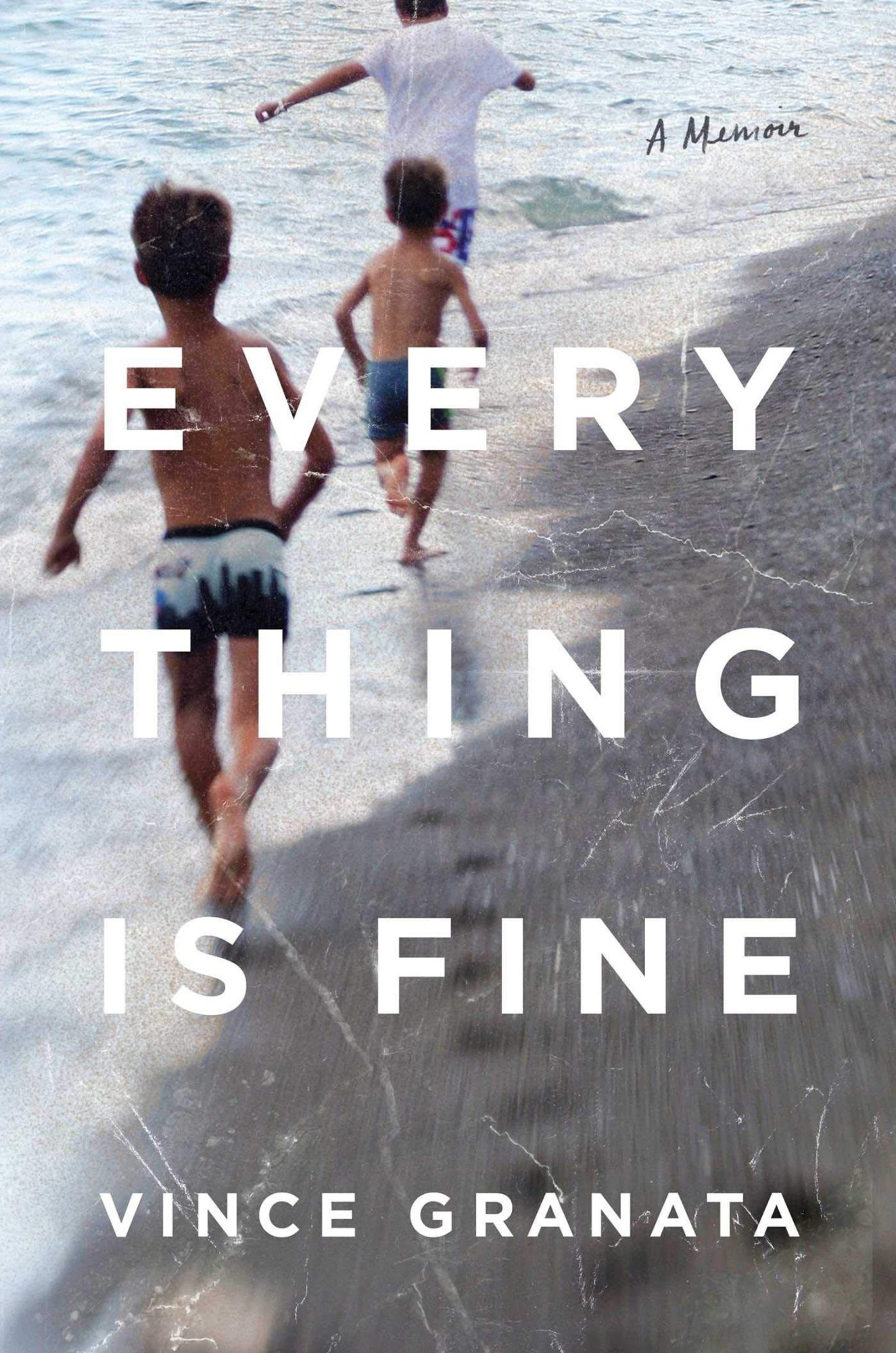 Everything Is Fine by Vince Granata