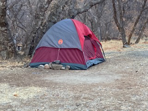 A woman SAR Officials searched for in December 2020 has been found alive in Diamond Fork in Utah County.