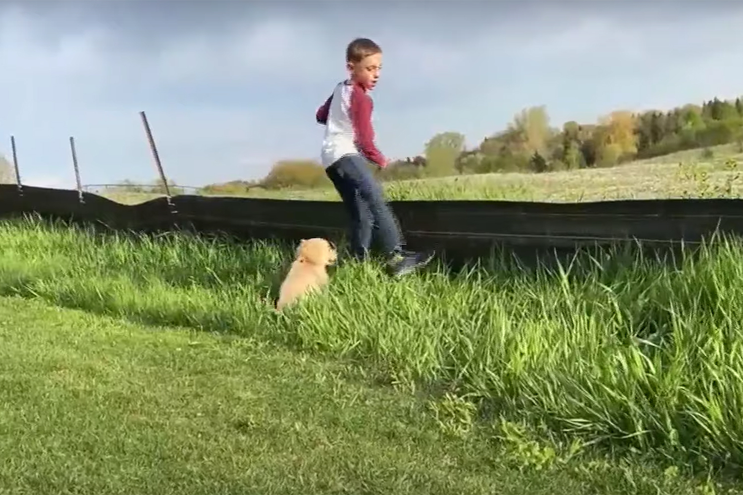 Minnesota Boy with Prosthetic Leg Finds His Furry Friend in Golden Retriever Puppy Born Without Paw