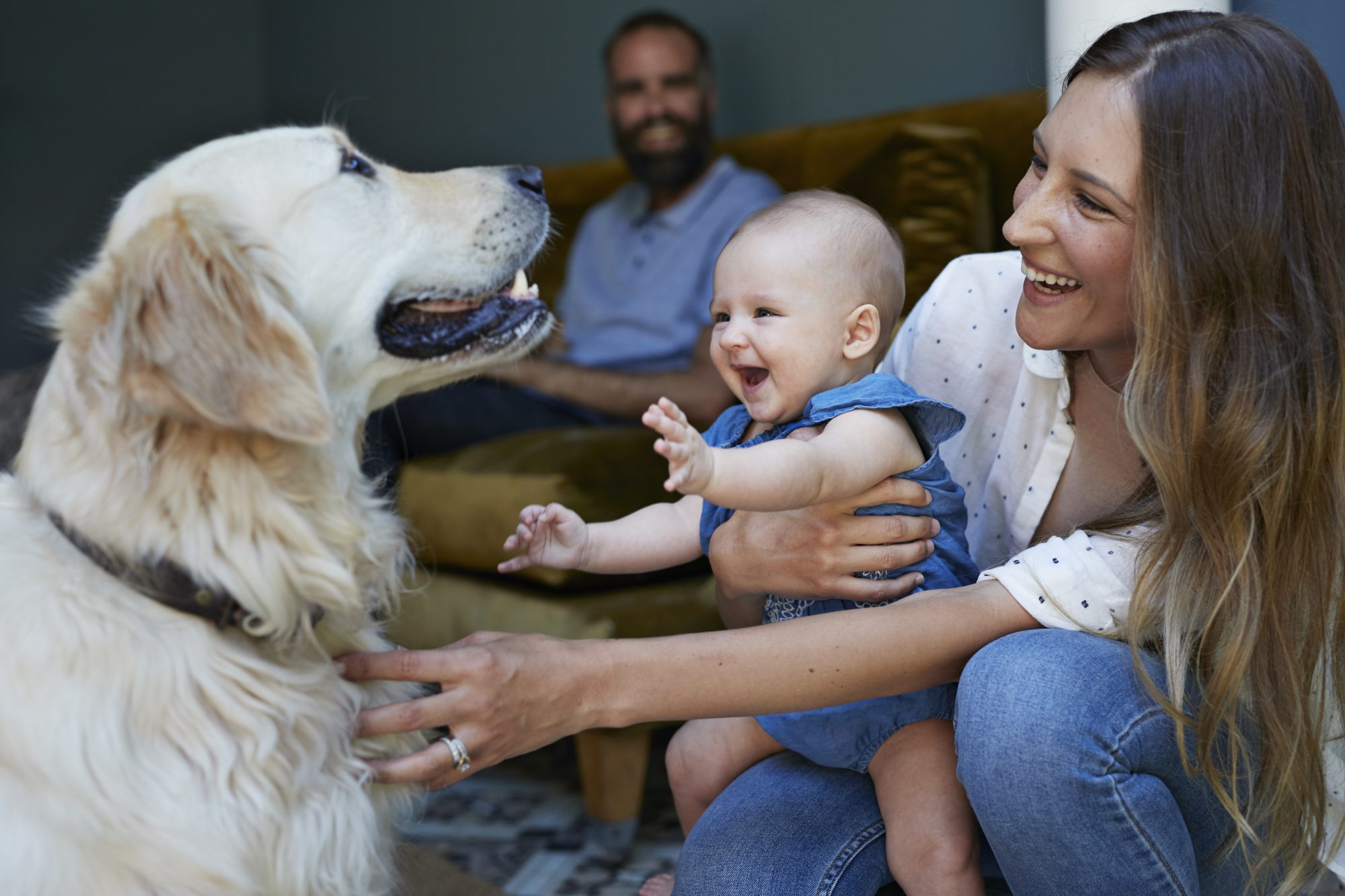 pet owning helps with parenting