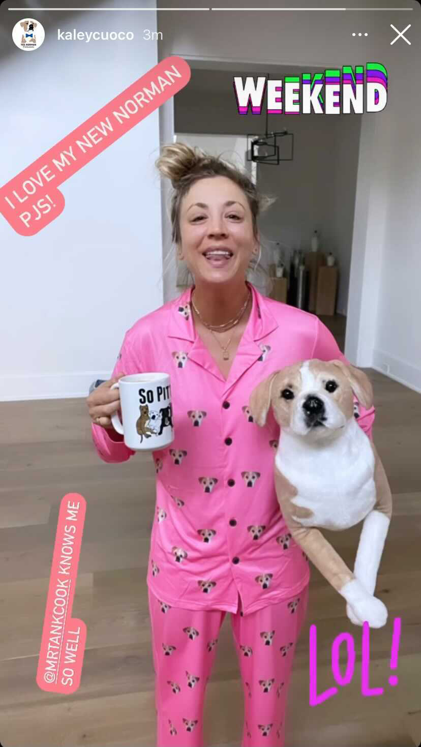 Kaley Cuoco Says Stuffed Replica of Her Late Dog Norman was best anniversary gift from husband